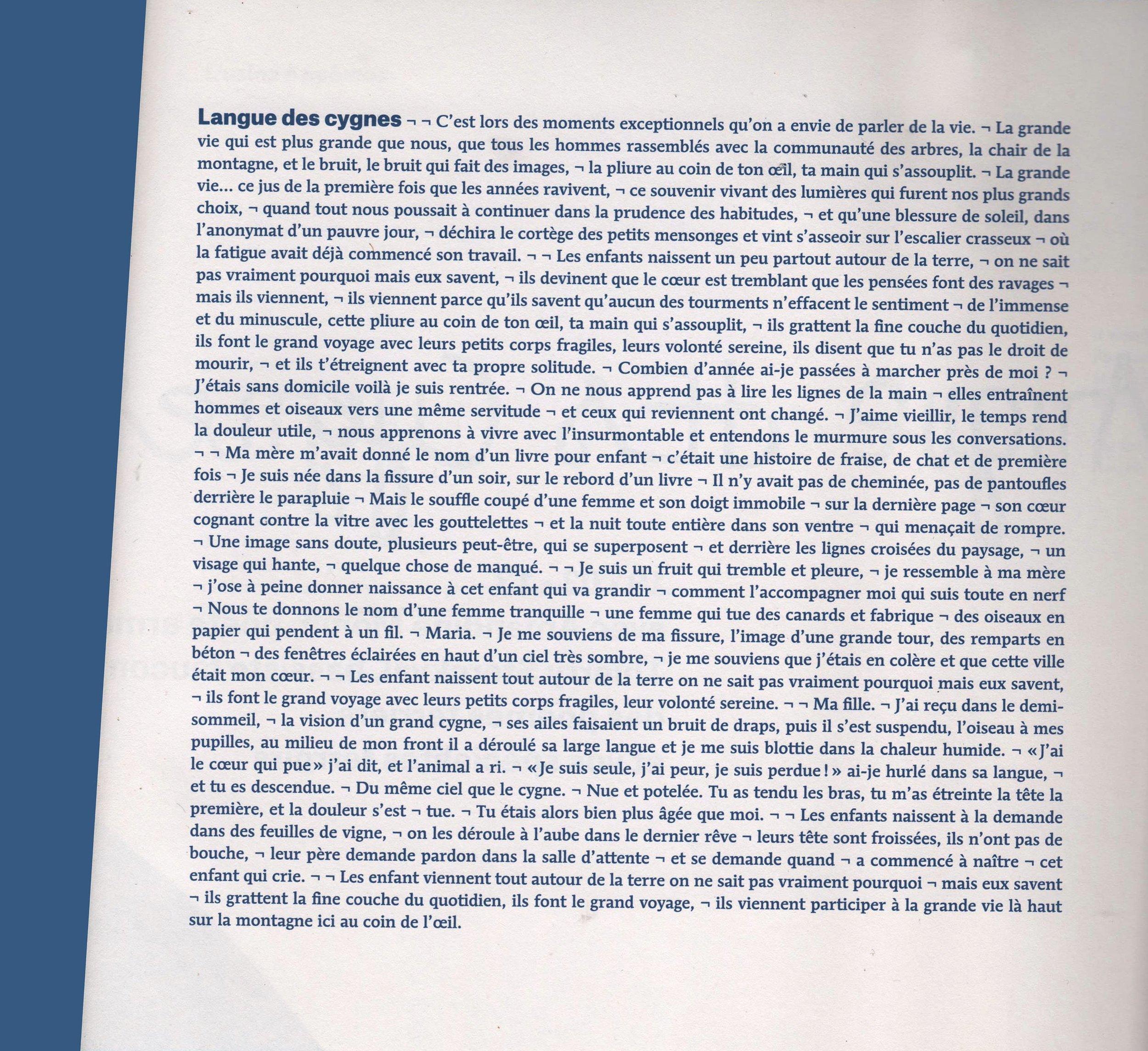 Langues des cygnes.jpg