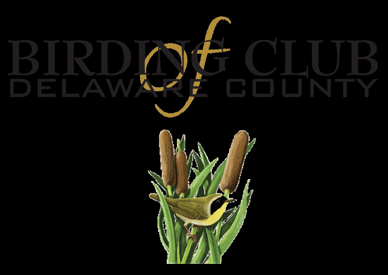 BCDC logo(3) .png
