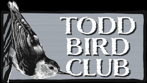 ToddBirdClub-logo-500px.png