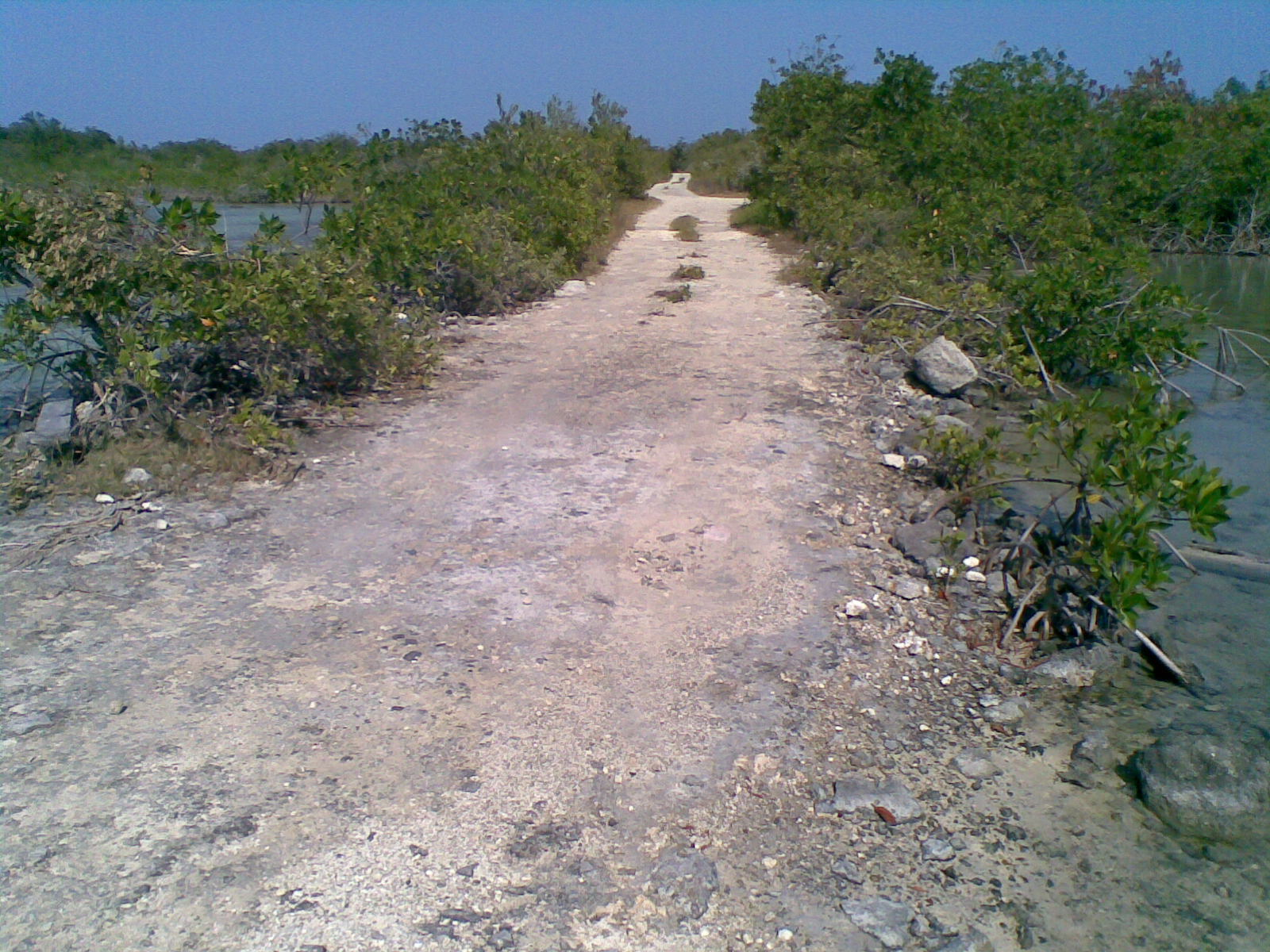 A road in La Aguada, near where Ron was last seen. - Photo taken by Private Investigator Steve Aguirre.