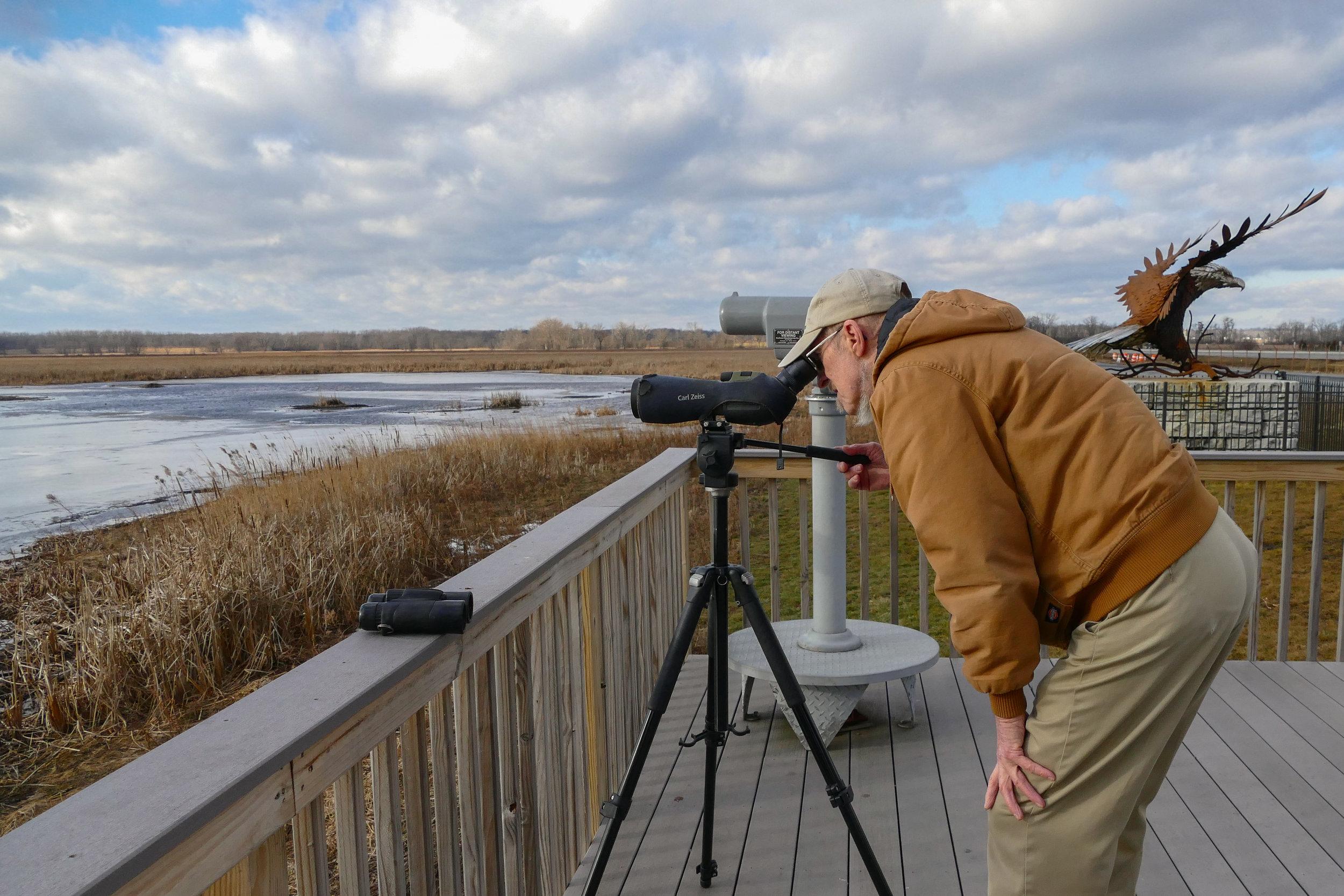 Bald eagle survey at Montezuma National Wildlife Refuge