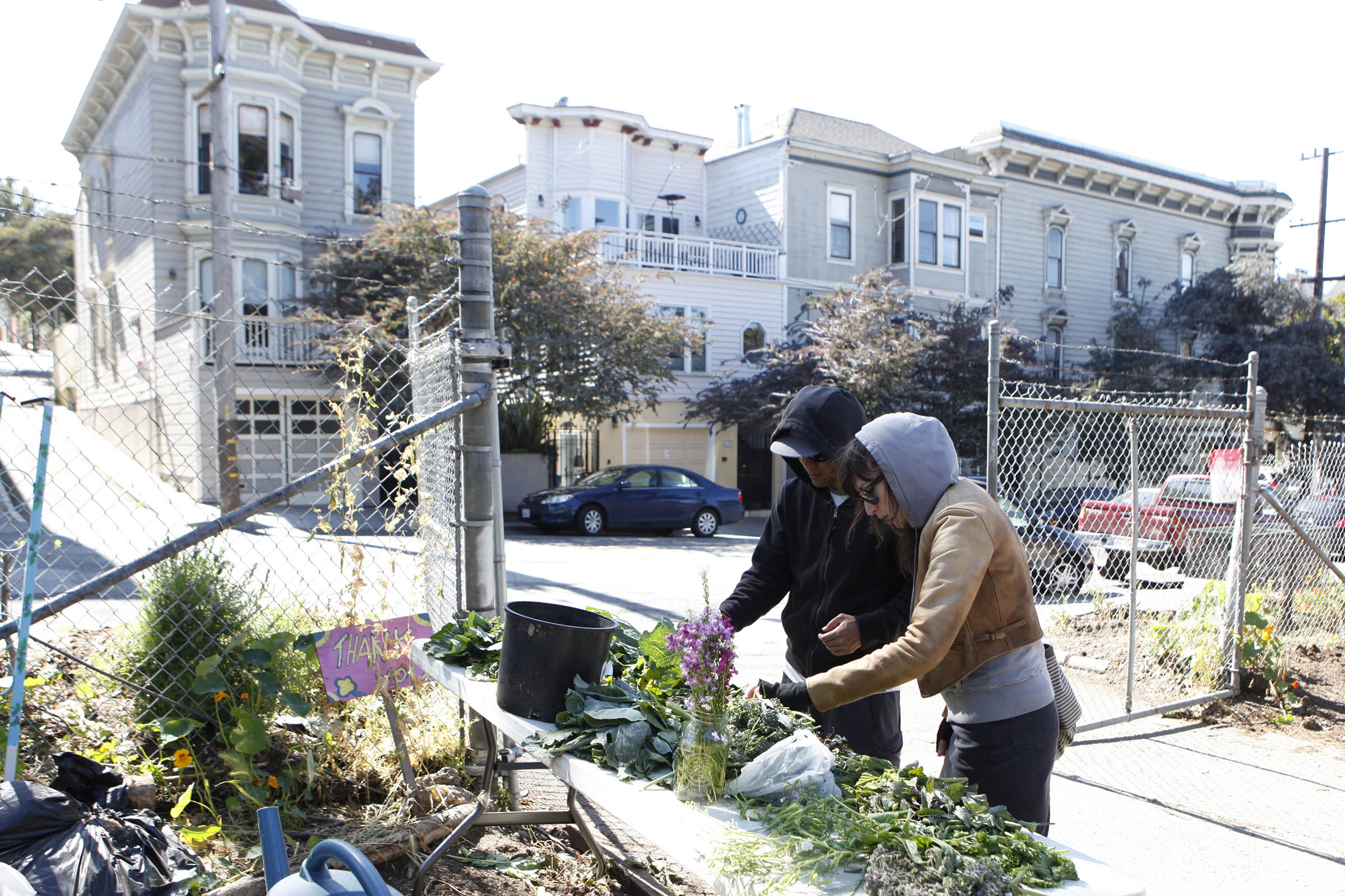 Hayes Valley Farm — Lydia Daniller