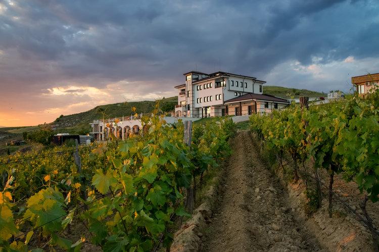 Villa Melnik -