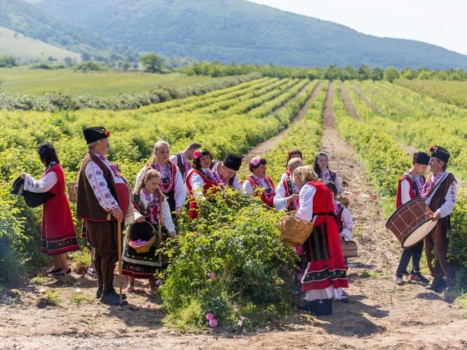 The Bulgarian Rose Festival -