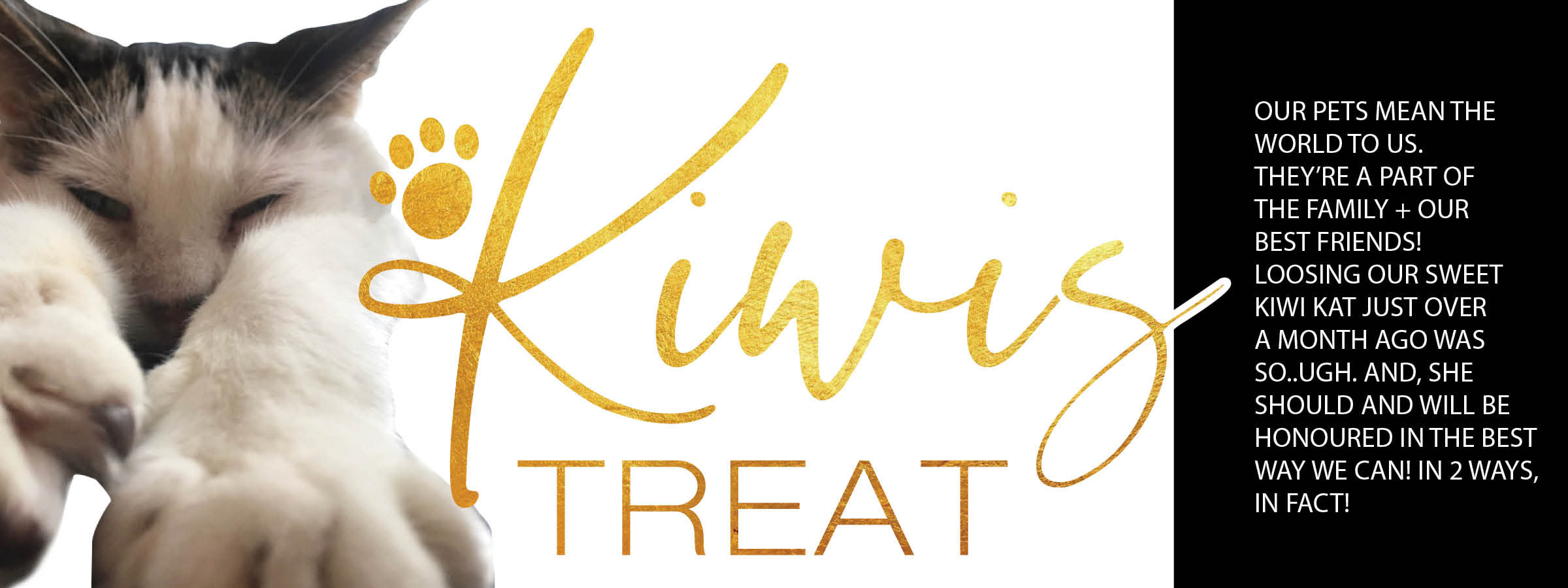 KIWIS TREAT FOR SITE.jpg