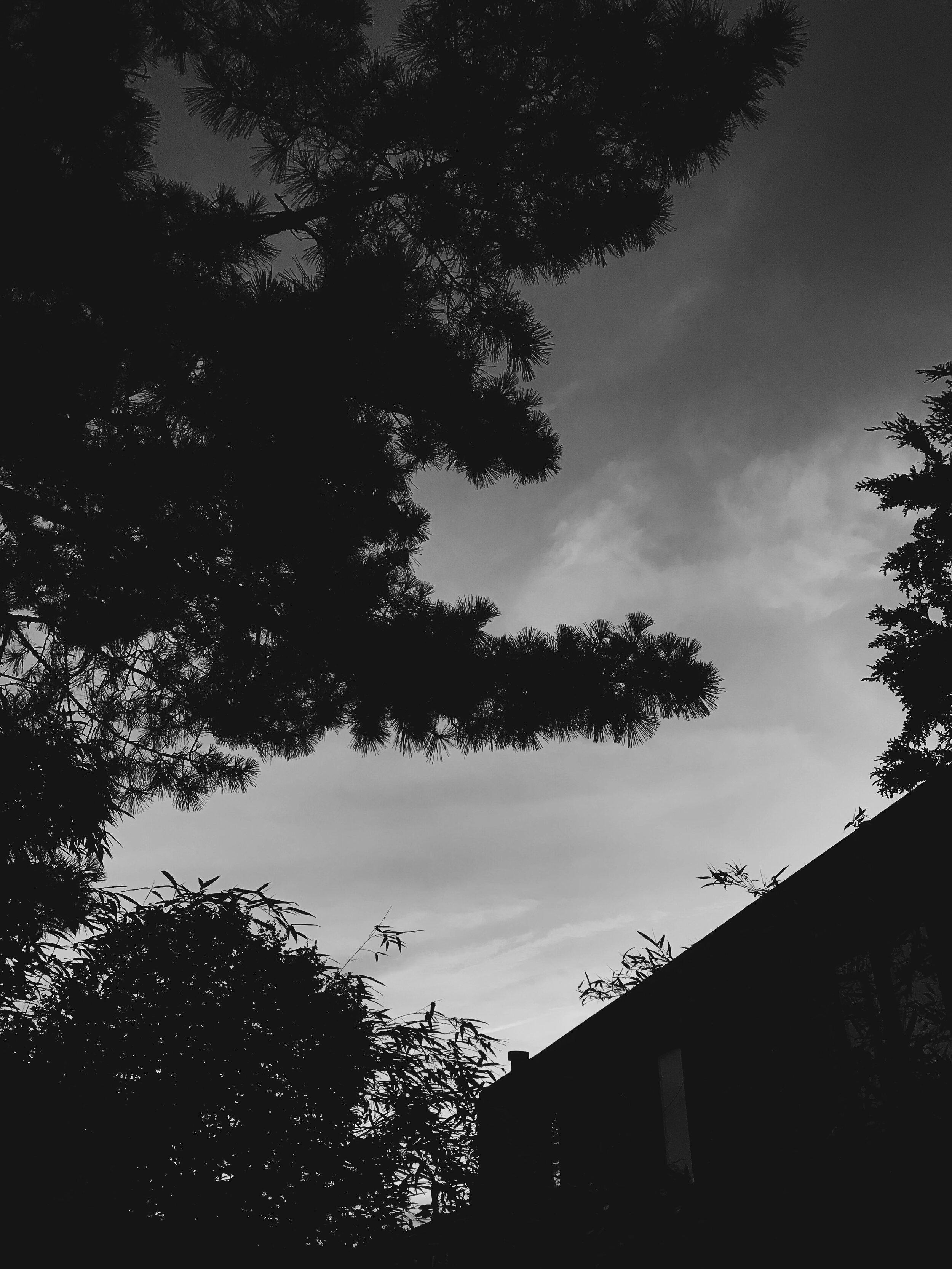 Photography/OliviaLombardo
