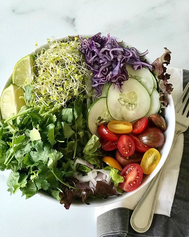 Rainbow salad on a bed of red leafy greens. 🌱🥗💚 - I think sometimes we take for granted how eating a simple lettuce, spinach, and other leafy greens can change and improve our health. I want to share some facts about these greens! - Leafy greens have living microorganisms that sweep the walls of the intestinal wall leaving behind all the mineral salts, powerful vitamins, proteins, enzymes, and nutrients acting as the pre-biotics, that our gut and body needs to restore, thrive and heal. - Leafy greens are easy to digest as they are almost predigested, requiring very little effort on the digestive system. - People with inflamed intestines (caused by bad bacteria, bad fungus, and viruses that are on the walls of the intestinal tract) may feel pain and discomfort from eating the leafy greens because the nerves in the intestinal lining are very sensitive or there is inflammation due to the pathogens. The nerves in your stomach are feeling the power of the greens that are working to clean and heal. - The fiber content in the greens act as gentle scrubbies cleaning away the rancid foods, bacteria and virus sitting in the linings of the intestines causing this inflammation. - The energy from the sun and the micronutrients in the leafy greens help restore the endocrine system. Greens help create more alkalinity and raise hydrochloric acid in the stomach (necessary for good absorption and digestion). It also helps the lymphatic system move out and get rid of the toxins. - Leafy greens are antiviral, anti-mold, antibacterial, and have the most assimilable protein for your body. Eating 2-3 cups of leafy greens a day or even a few times a week will do wonders for your health and immune system! 🌱🥬 - Information from @medicalmedium sound cloud on Leafy Greens and Life-Changing Foods Book 📚 🕊🙏🏻 . . . . #lifechangingfoods #plantbased #foodismedicine #healingpsoriasis #medicalmedium28daycleanse #plantsasmedicine