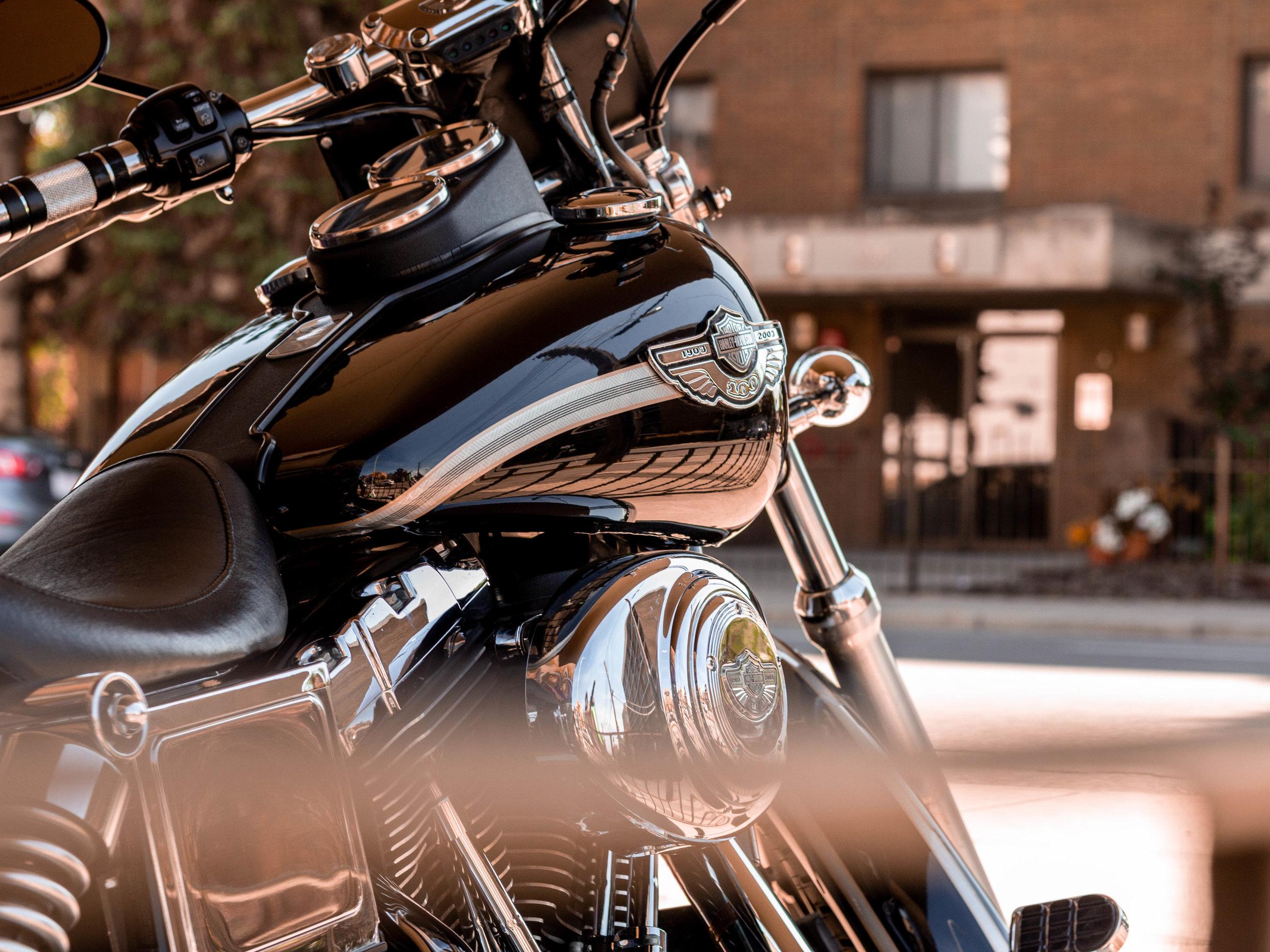 Harley (1 of 1).JPG
