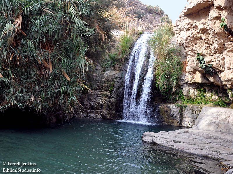 The refreshing waters of En Gedi where David stayed hiding from Saul