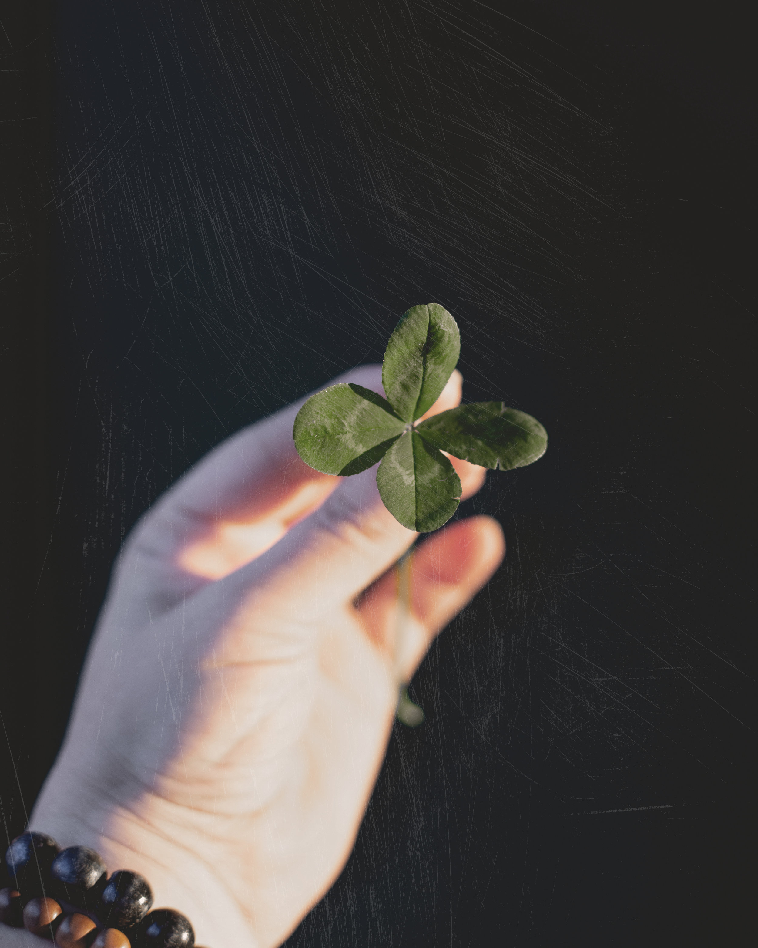 Four leaf clover PS edit.jpg