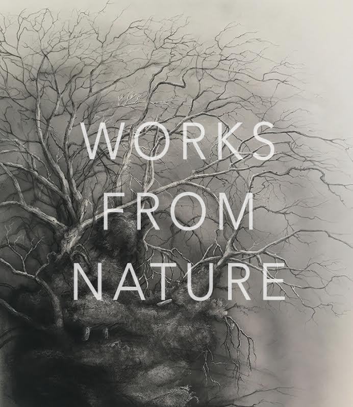 multimedia works inspired by nature
