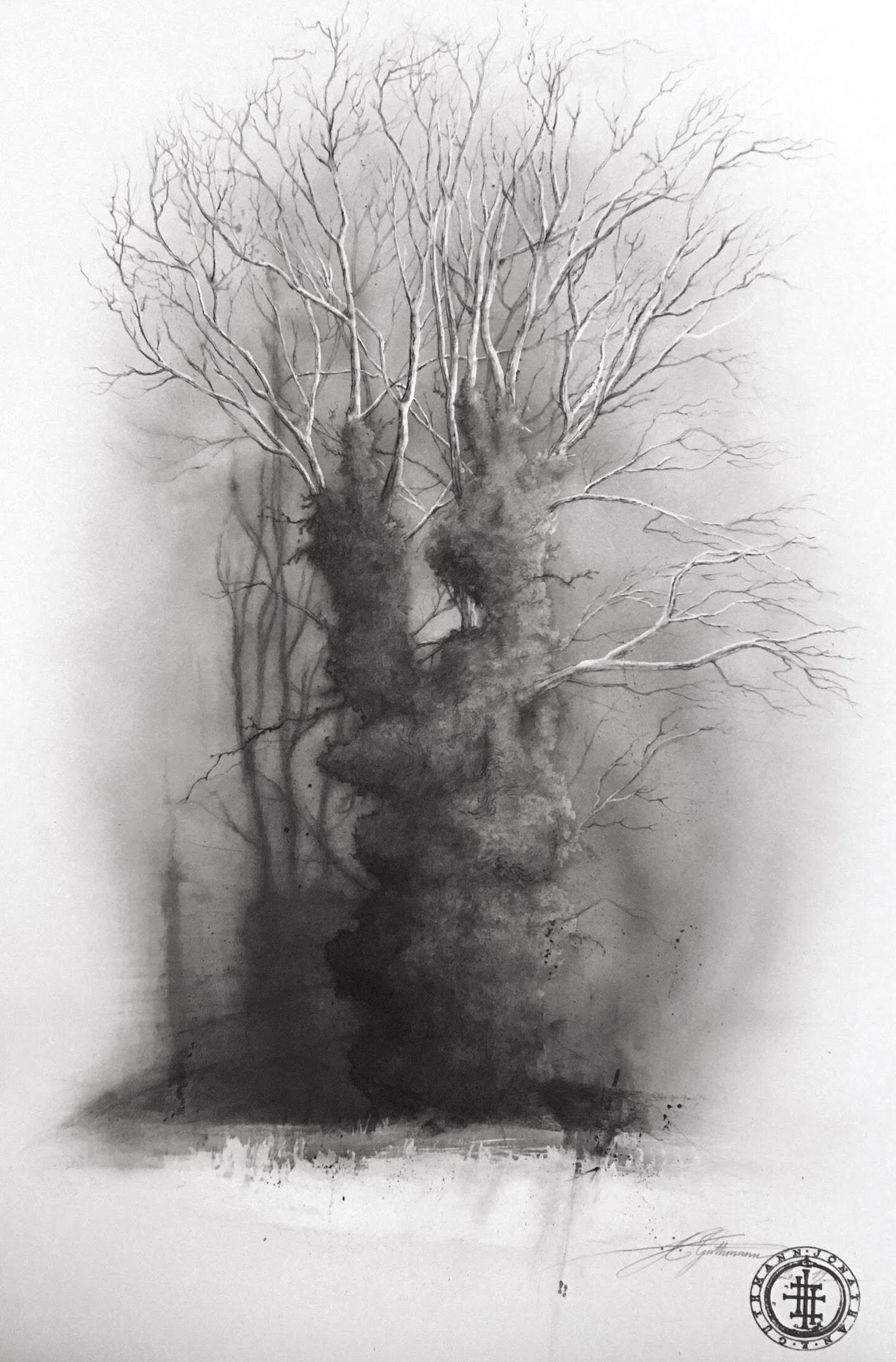 """Tree study 1"" (germany)  charcoal, ink and graphite on paper"