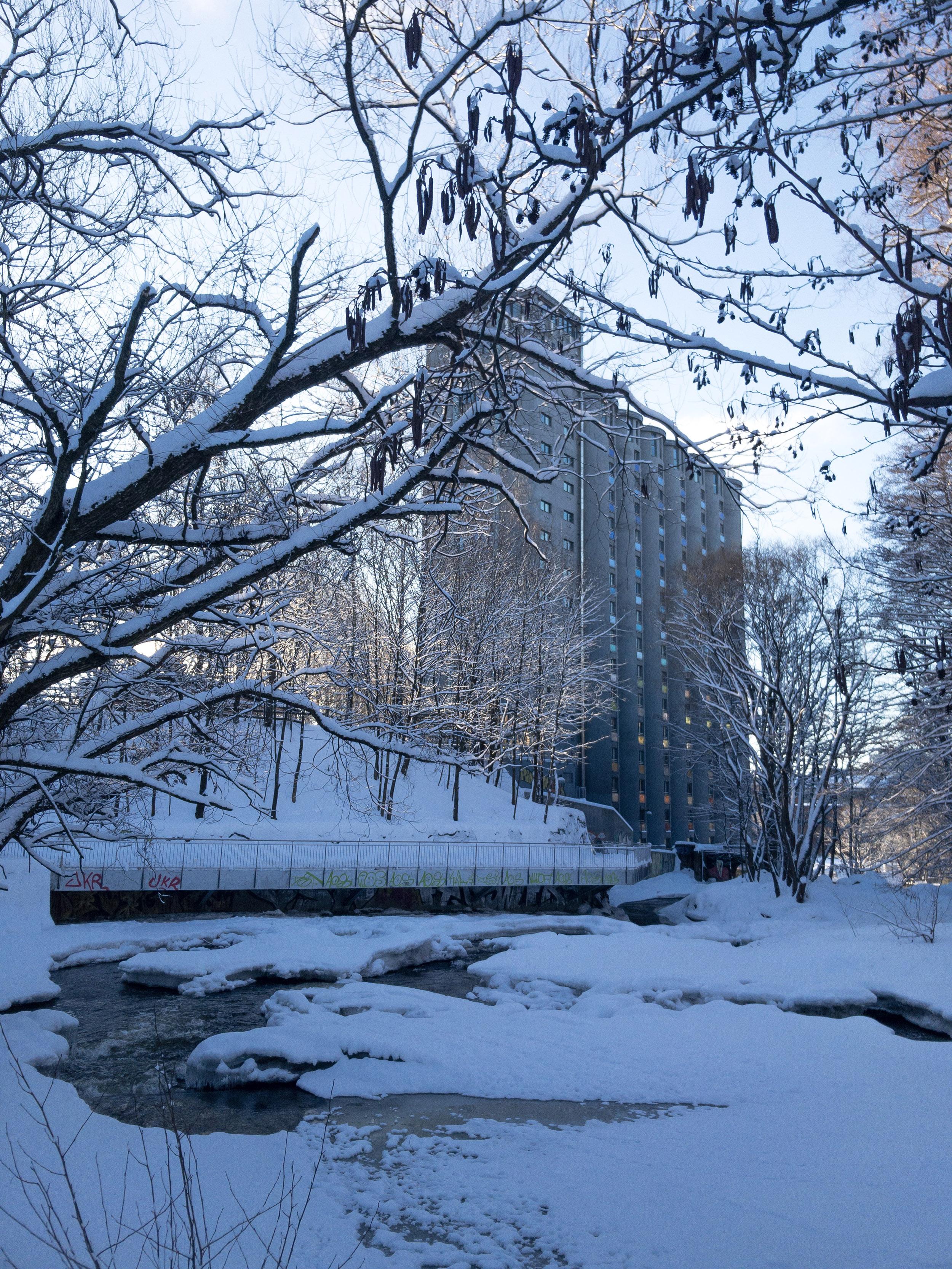 Akerselva River walk Oslo winter.JPG