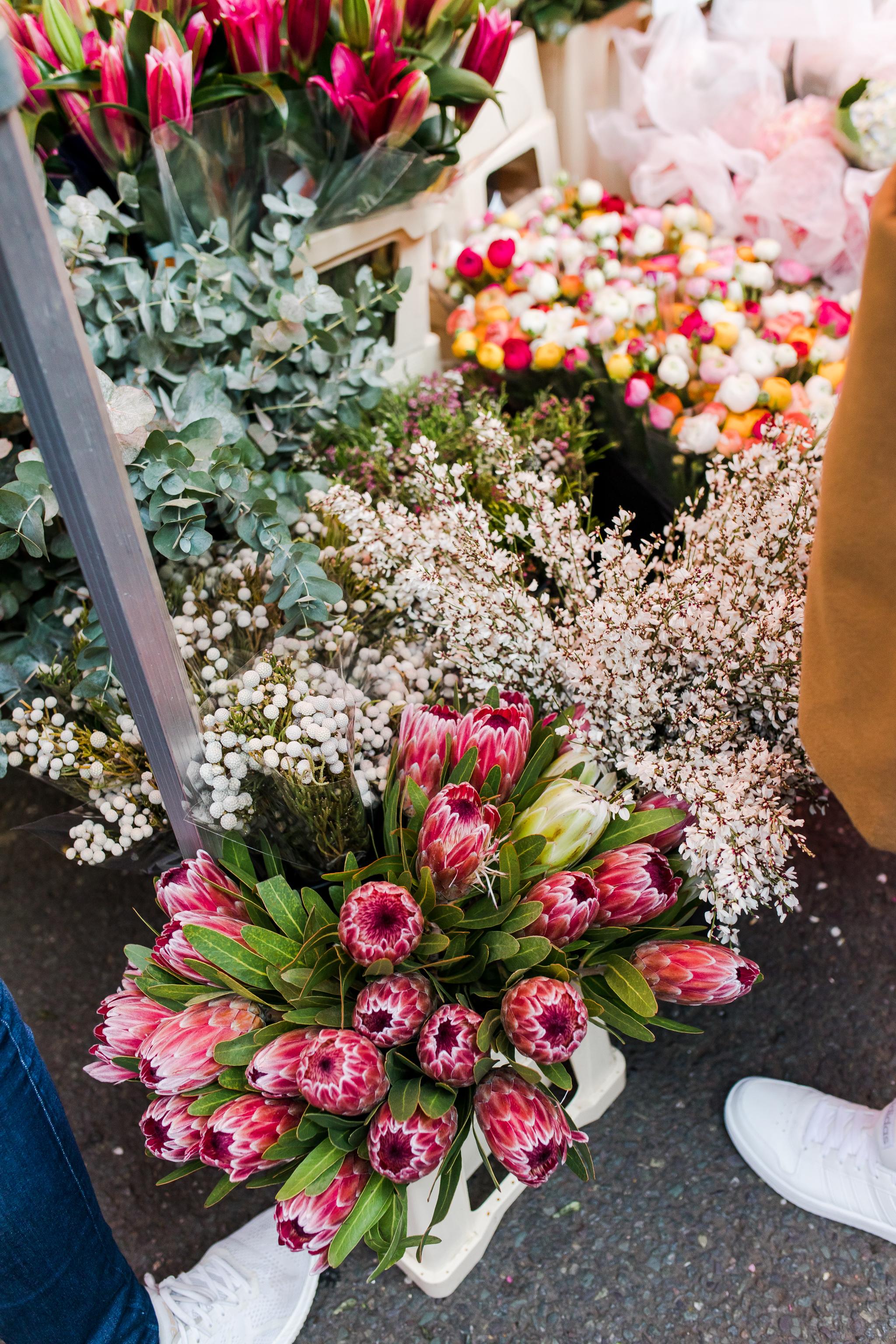 Columbia Road Flower Market Close Up Flowers.jpg