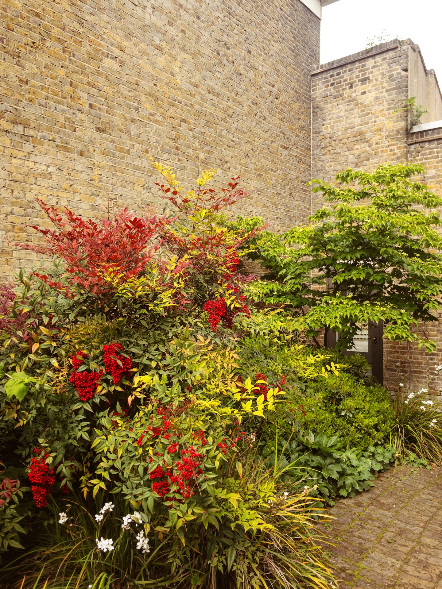 South London Gallery Secret Back Garden - What Dominika Did.JPG