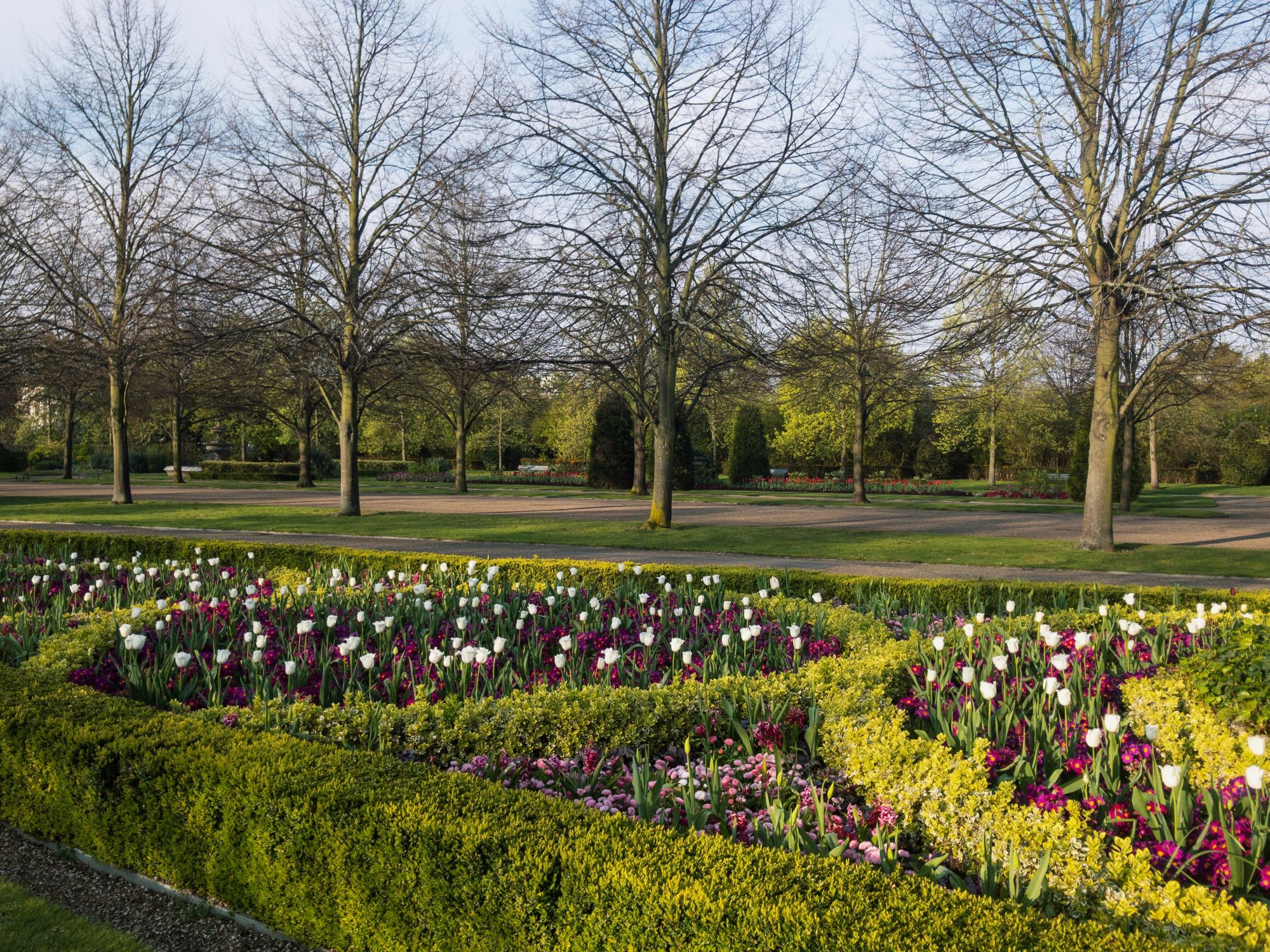 Regents Park Spring Day Flowers.JPG