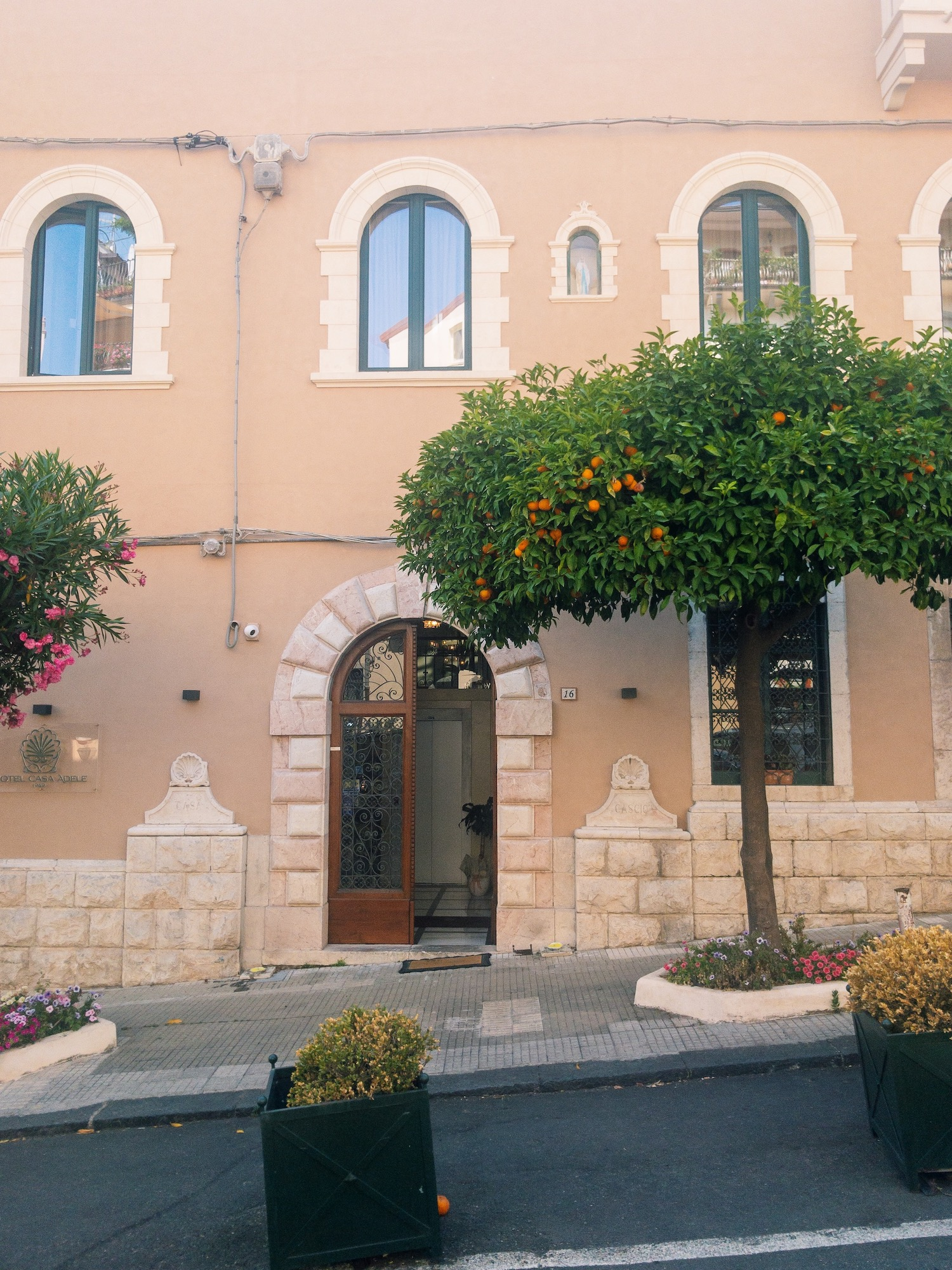 Taormina Sicily Orange Tree.JPG