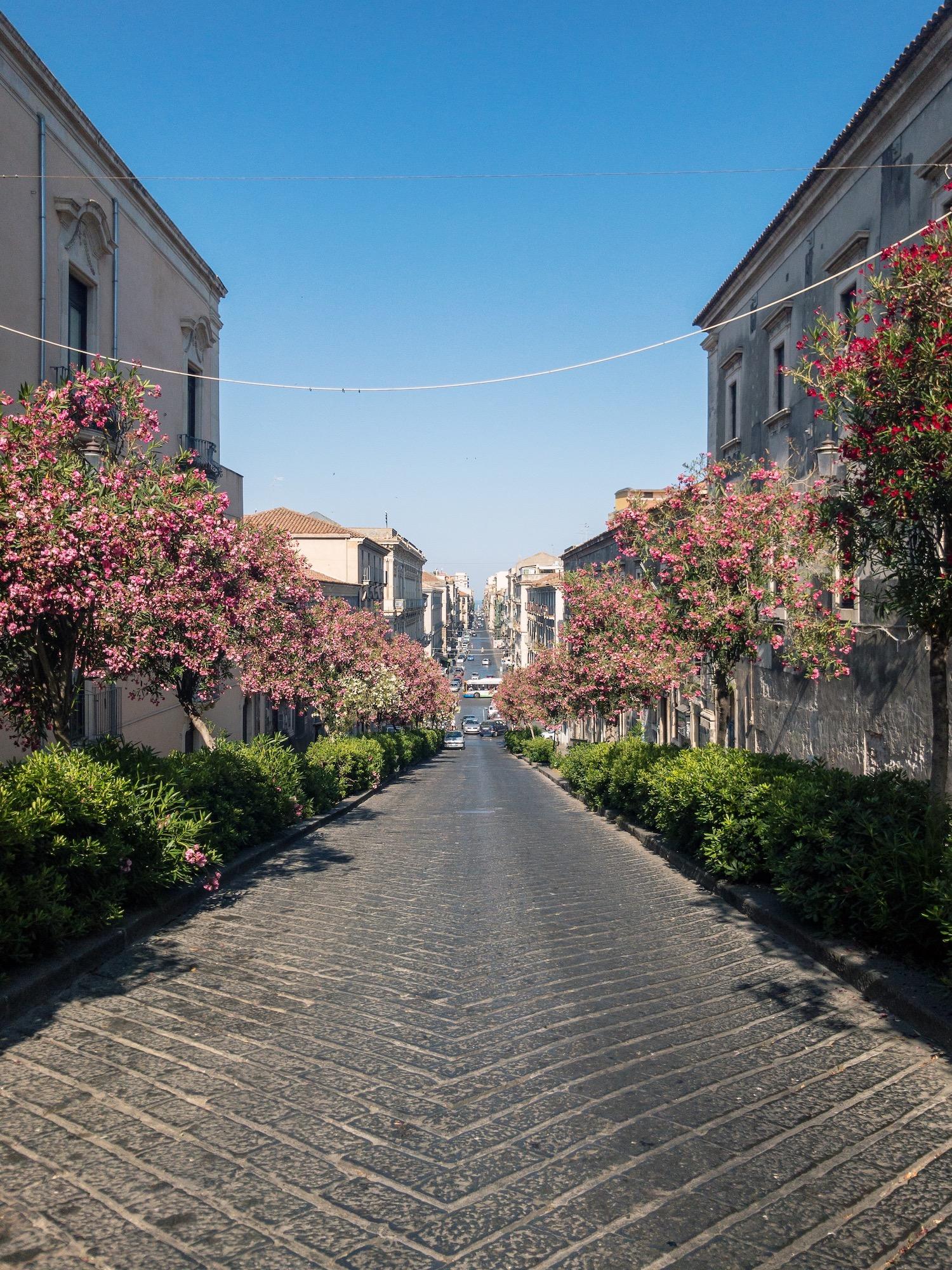 Catania Sicily Must Visit.JPG