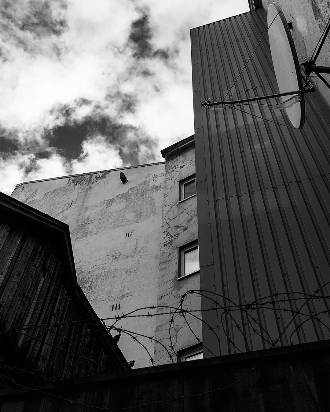 Duer som sitter på et hustak på kanten seende nedover i husgården. trondheim. landskap cityscape byfotografi Blackandwhite piggtråd