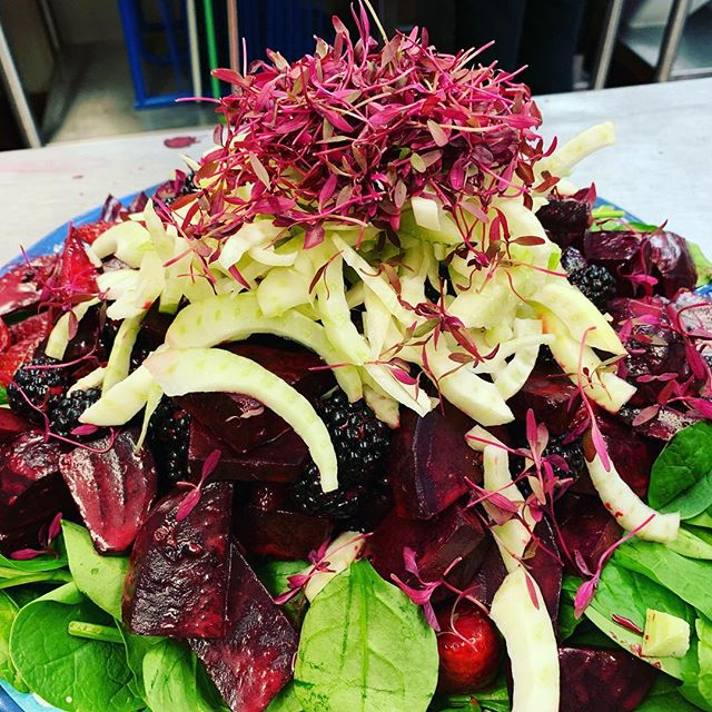 Epic times making meals for the @satnamfestival community @balsamicmercy leading the way we had a blast in the kitchen #beets #fennel #berries #balsamic #greens #eatplants #consciuoschefs #satnam #yoga #kundalini #travel #nakedfoods #surf #malibu #california