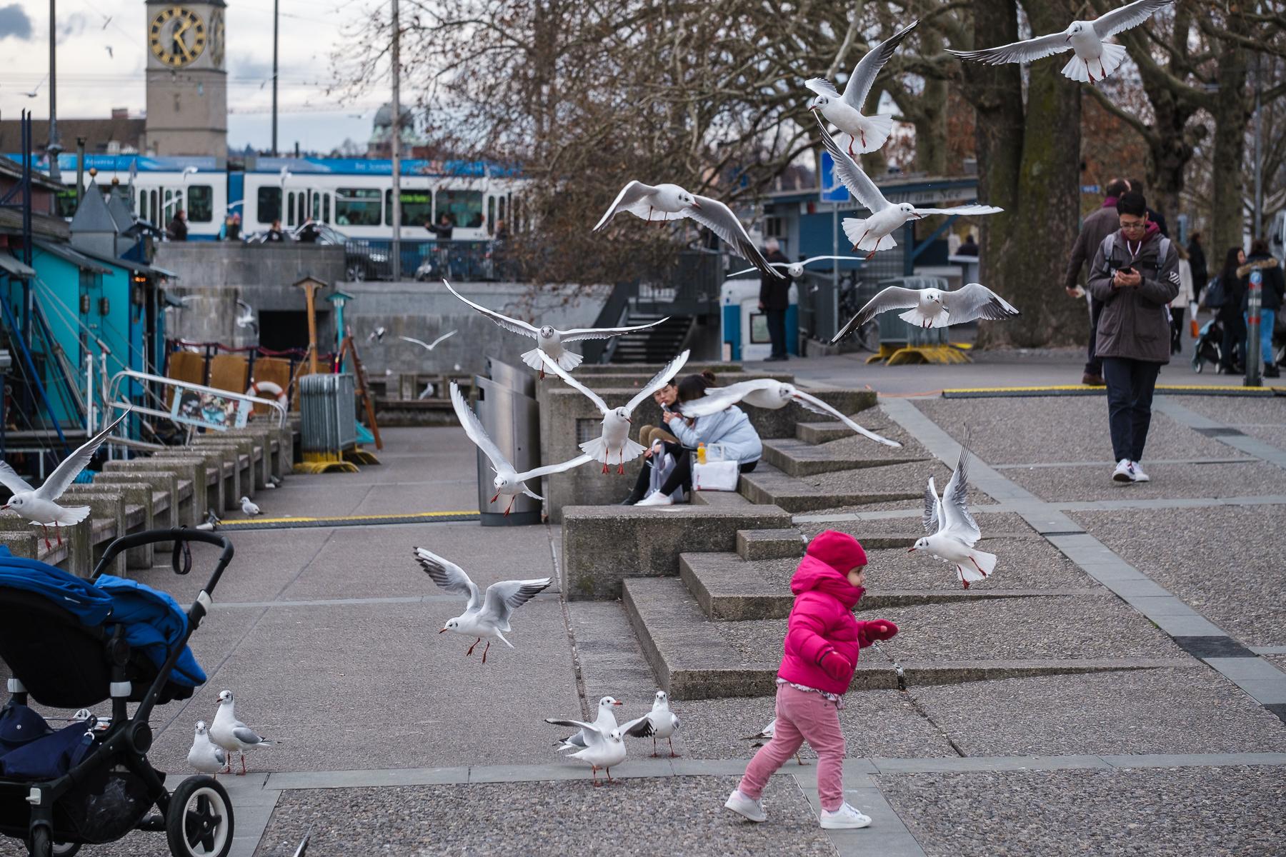 Zürich Limmat See - Hans-Peter Breiter - www.zeitbilder.ch