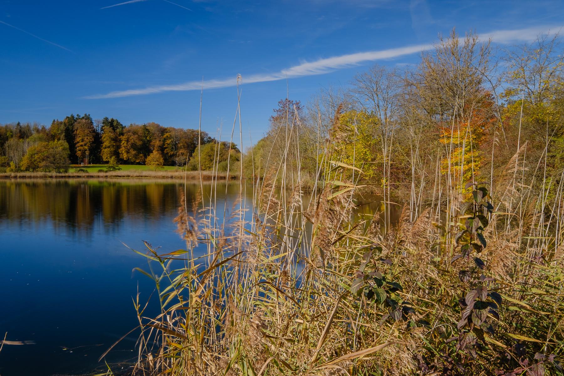Brauiweiher bei Weisslingen und Girenbad bei Hinwil - Hans-Peter Breiter - www.zeitbilder.ch