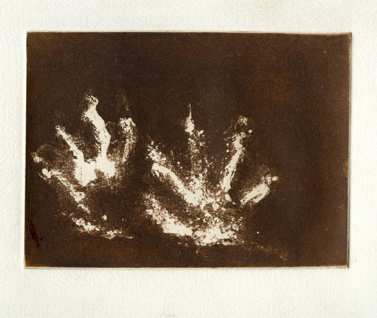 Tyra Print etching 20cm x 16cm