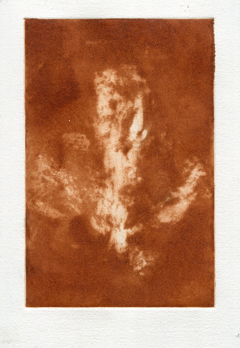 Tapir print etching- Natural pigment - 20cmx15cm