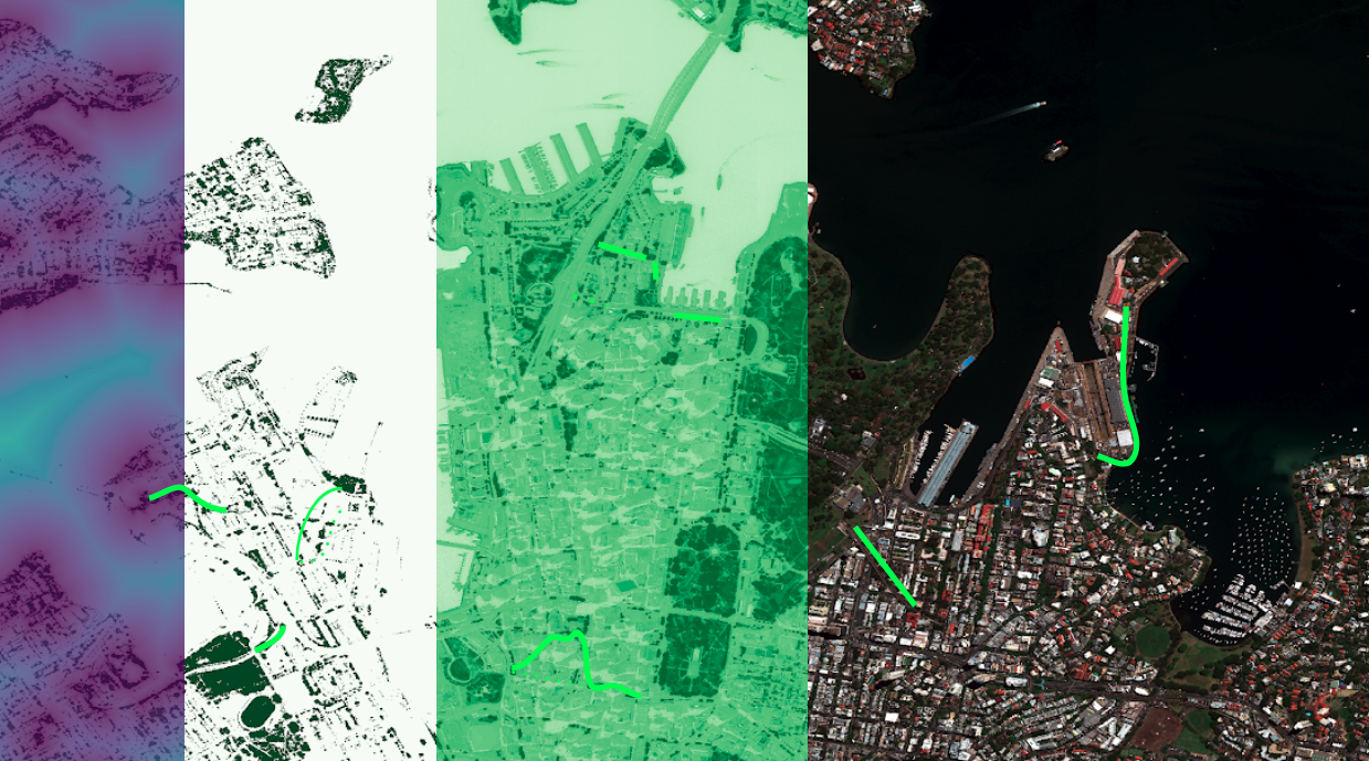Wildlife corridor mapping for the City of Sydney. From left to right: distance to habitat (darker is closer to habitat), suitable species habitats in dark green, NDVI, satellite image with corridor options overlay in green.