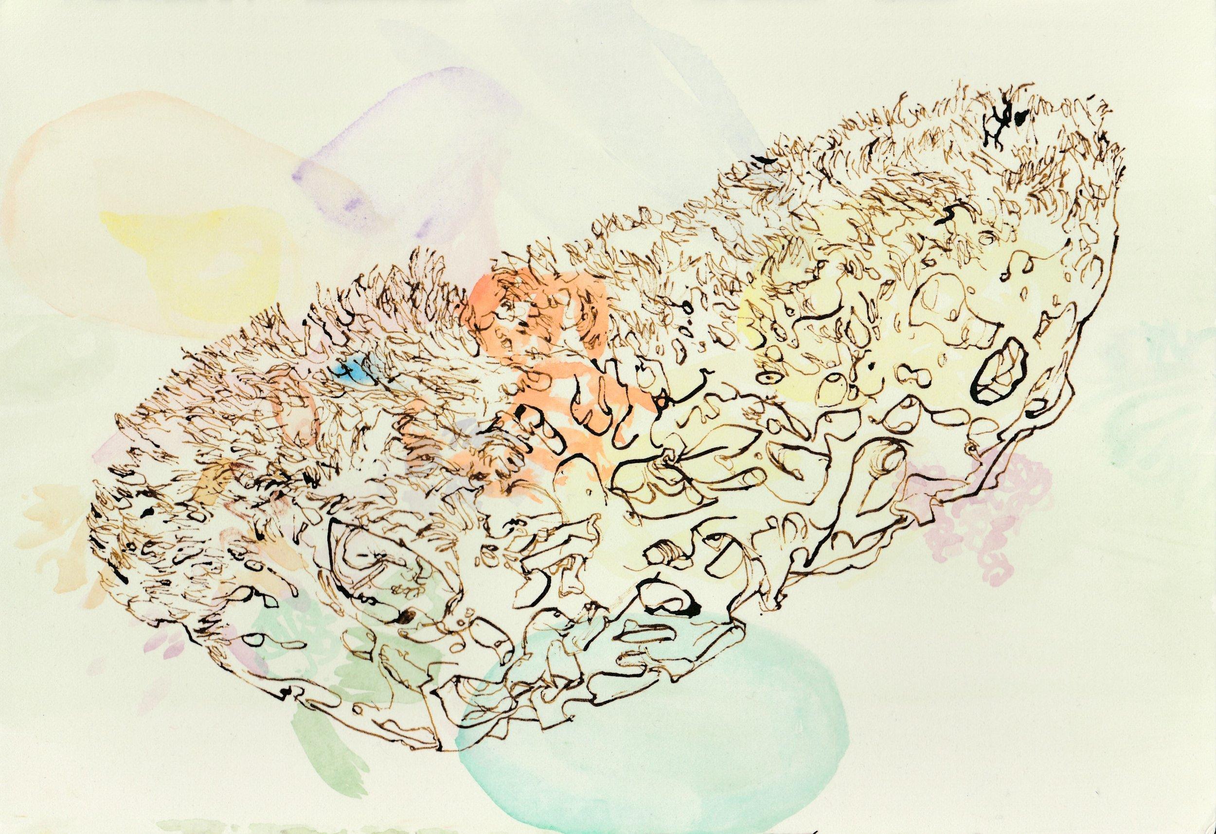 Mohammadi.Womb.jpg