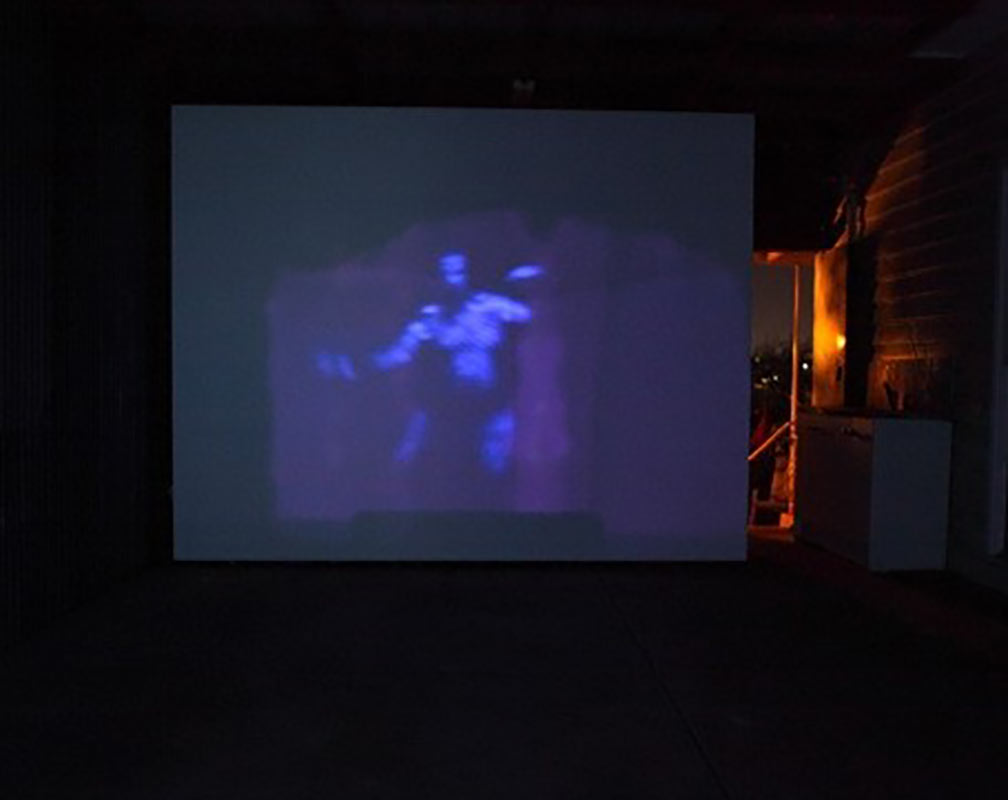 Moth,-image-from-video-projection-and-installation,-Rumpus-Room,-2017.jpg