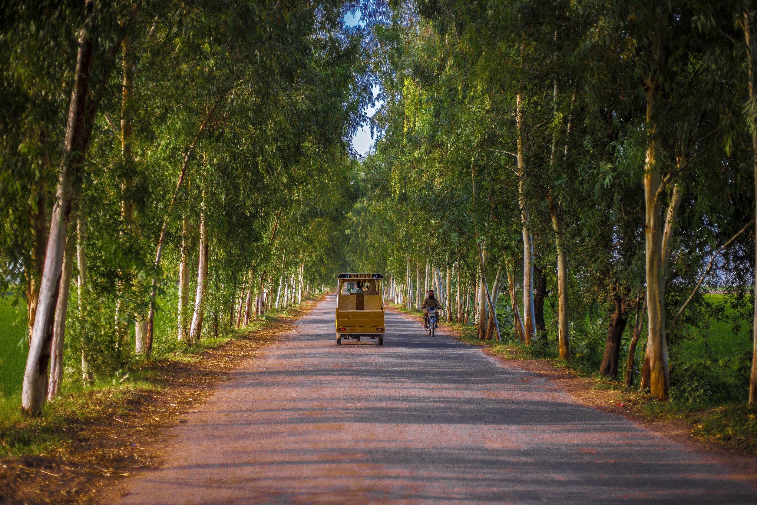Photo 106 - Rikshaw in Village.jpg