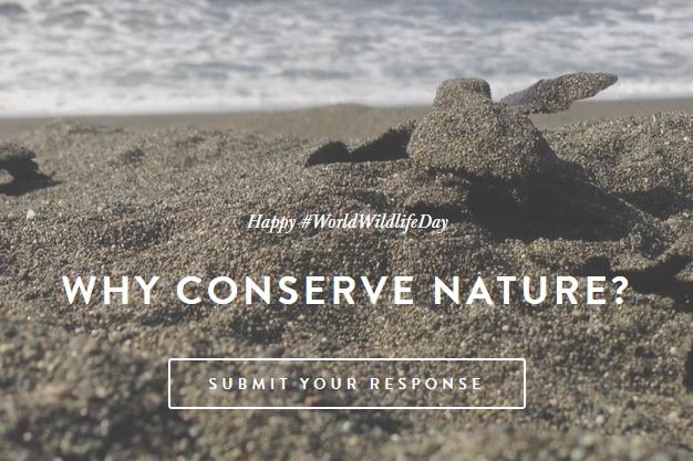 worldwildlifeday why conserve.jpg