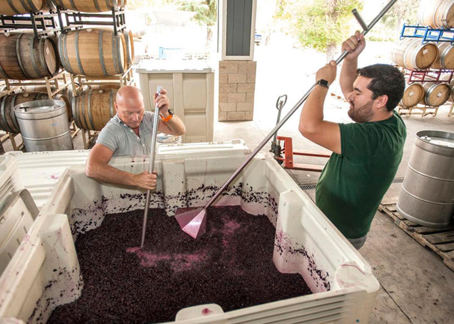 WineMaking-2.jpg