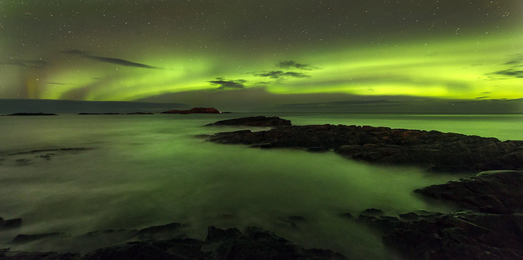 aurora andoy.jpeg