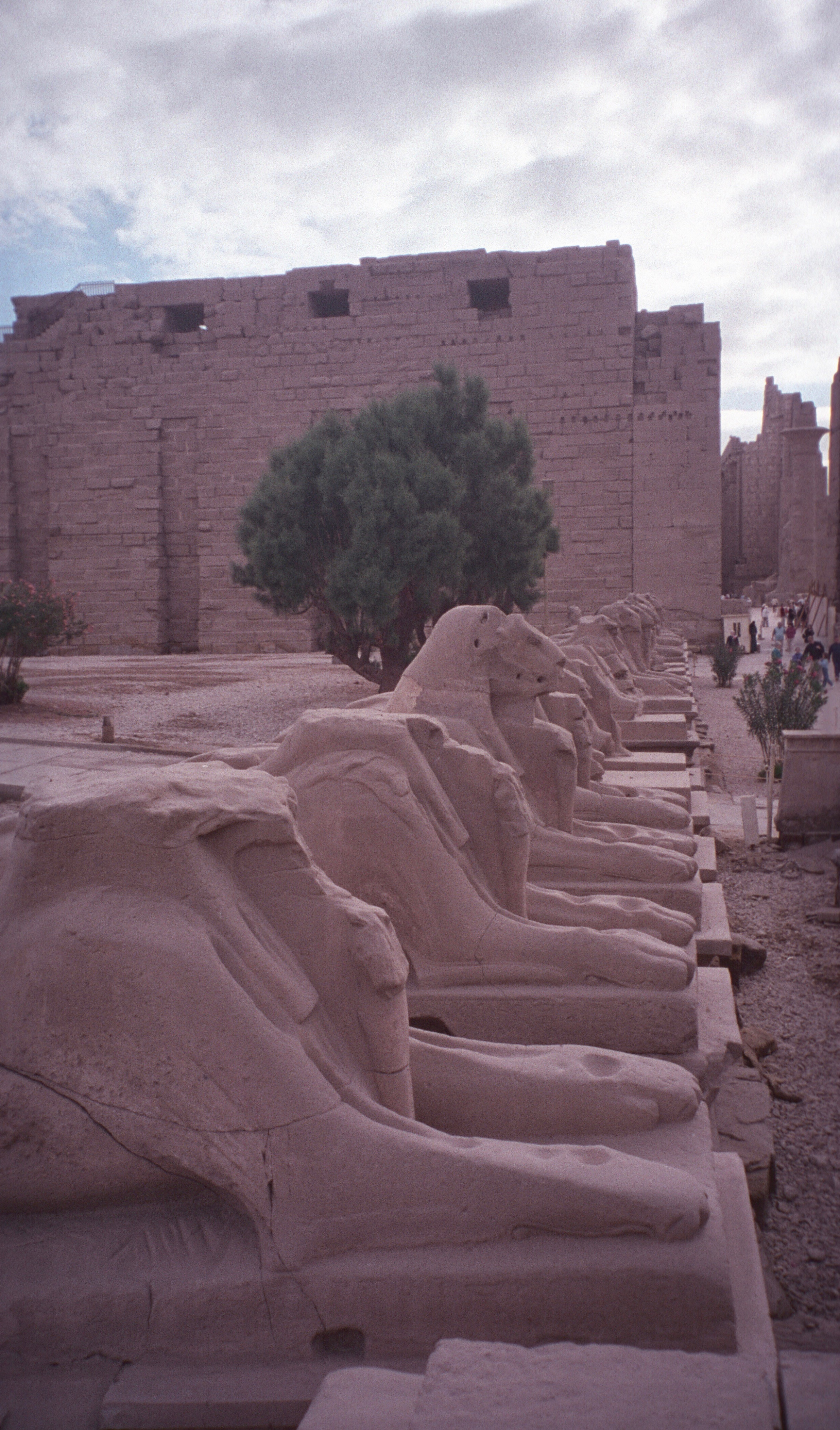 egypt064.jpeg