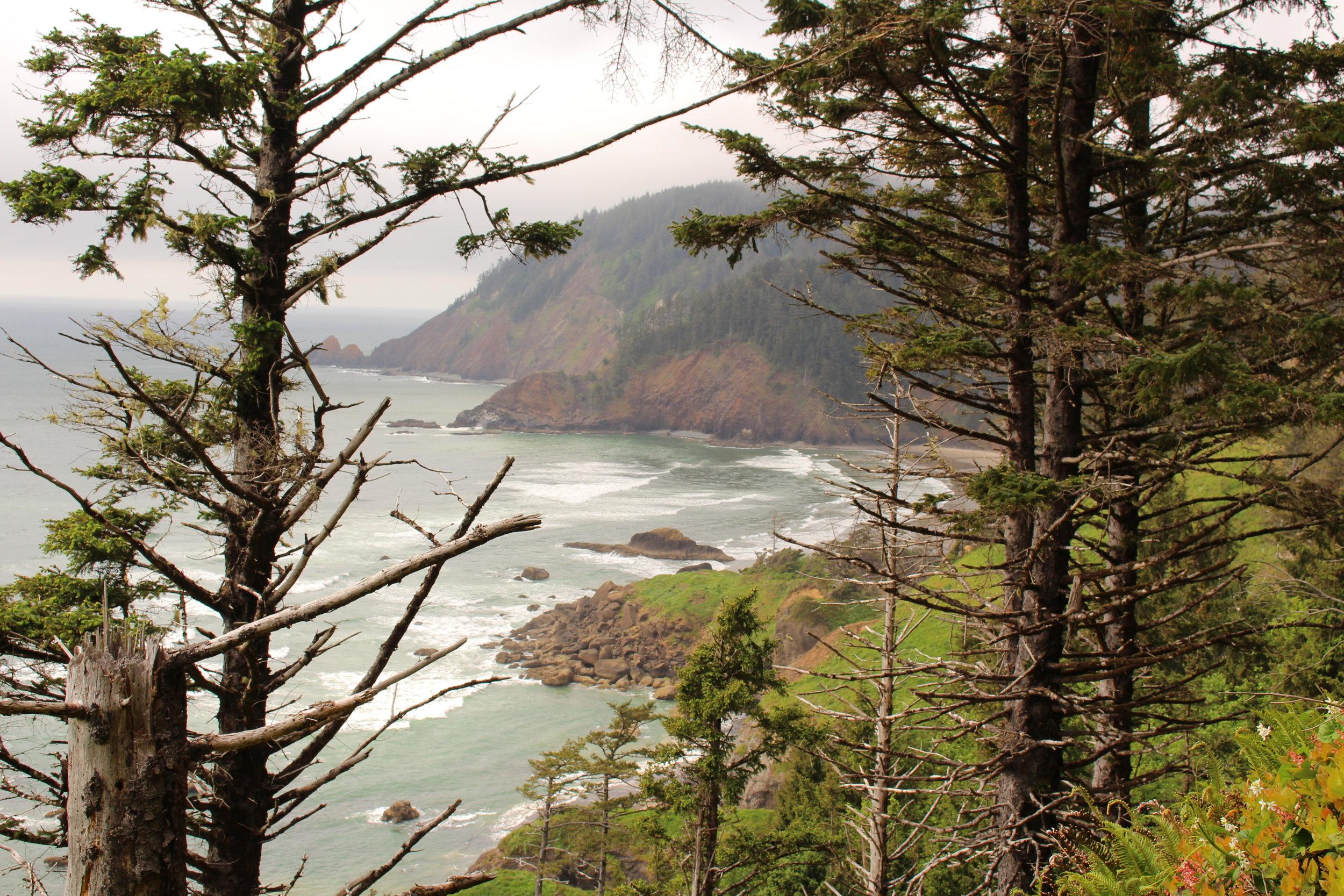 Coast of Oregon, USA