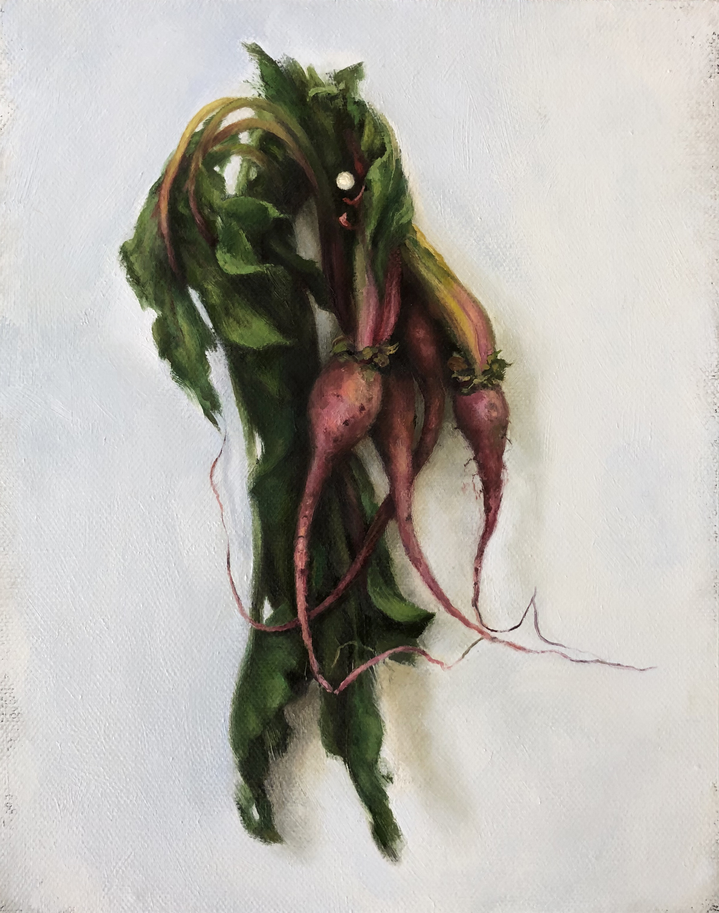 """THE RADISHES VI  oil on canvas 10"""" x 8"""" 2018"""