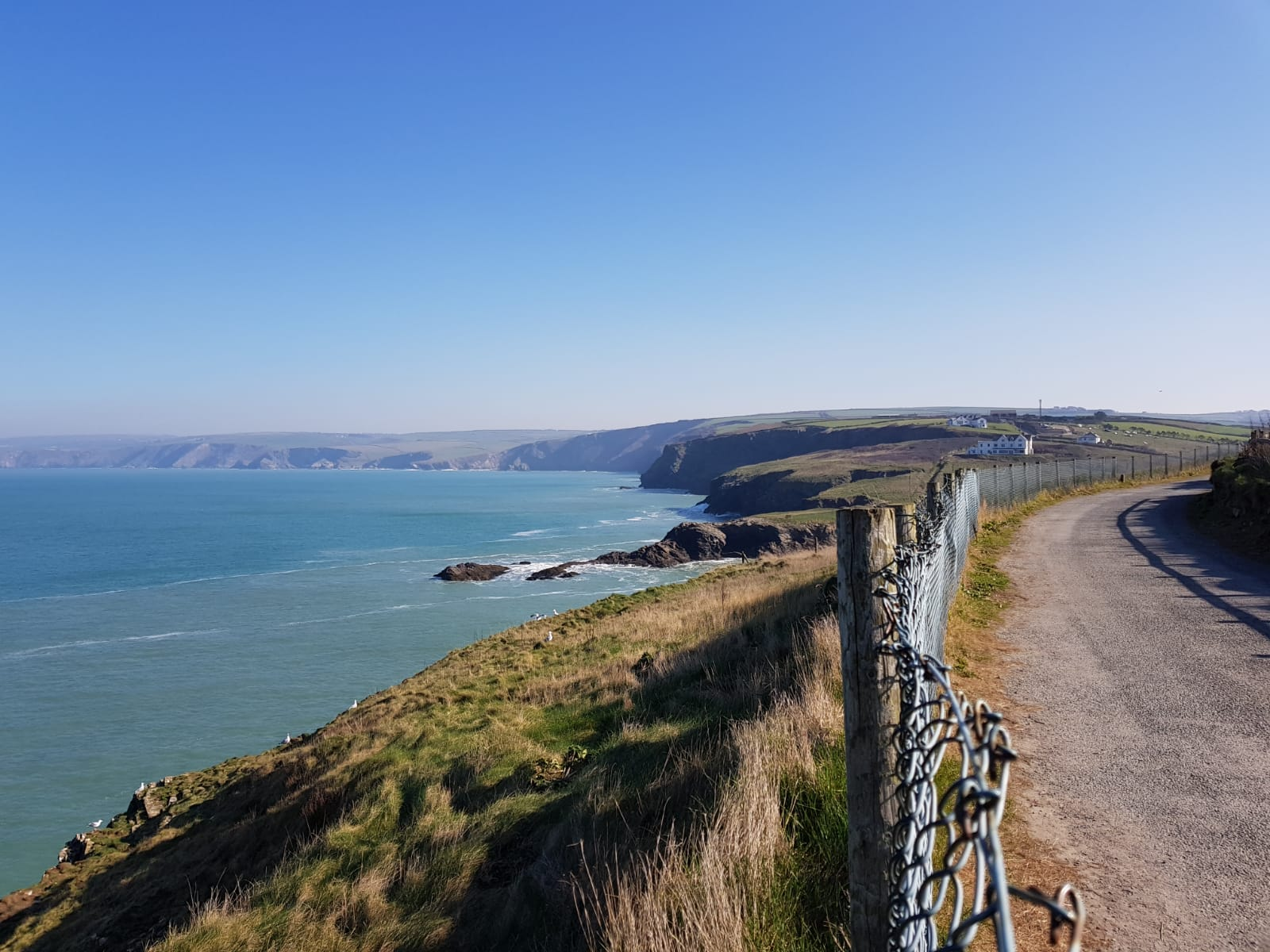 Tredore view form Port Isaac back to Gaverne.jpeg