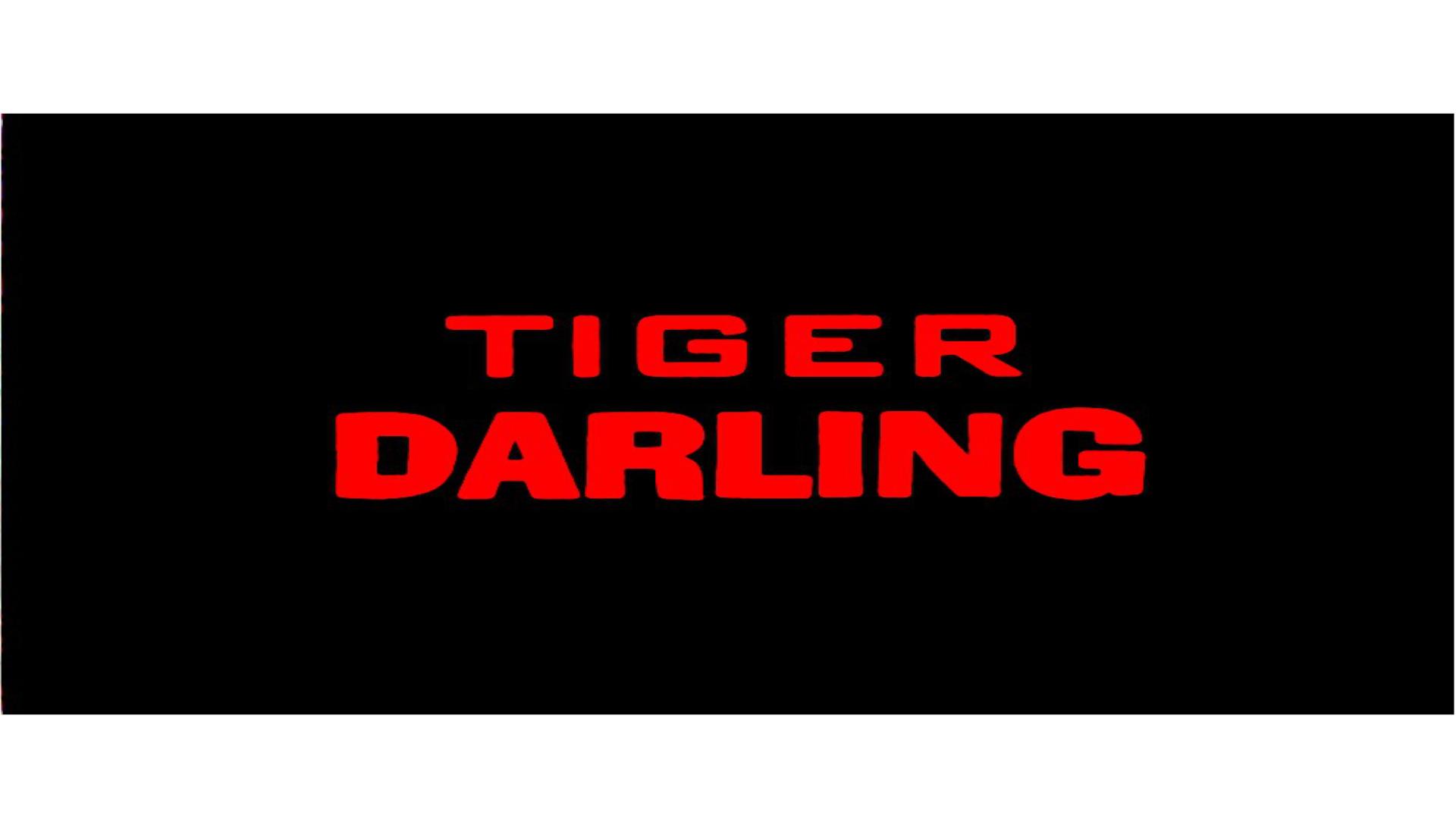 TD Logo white banner.jpg