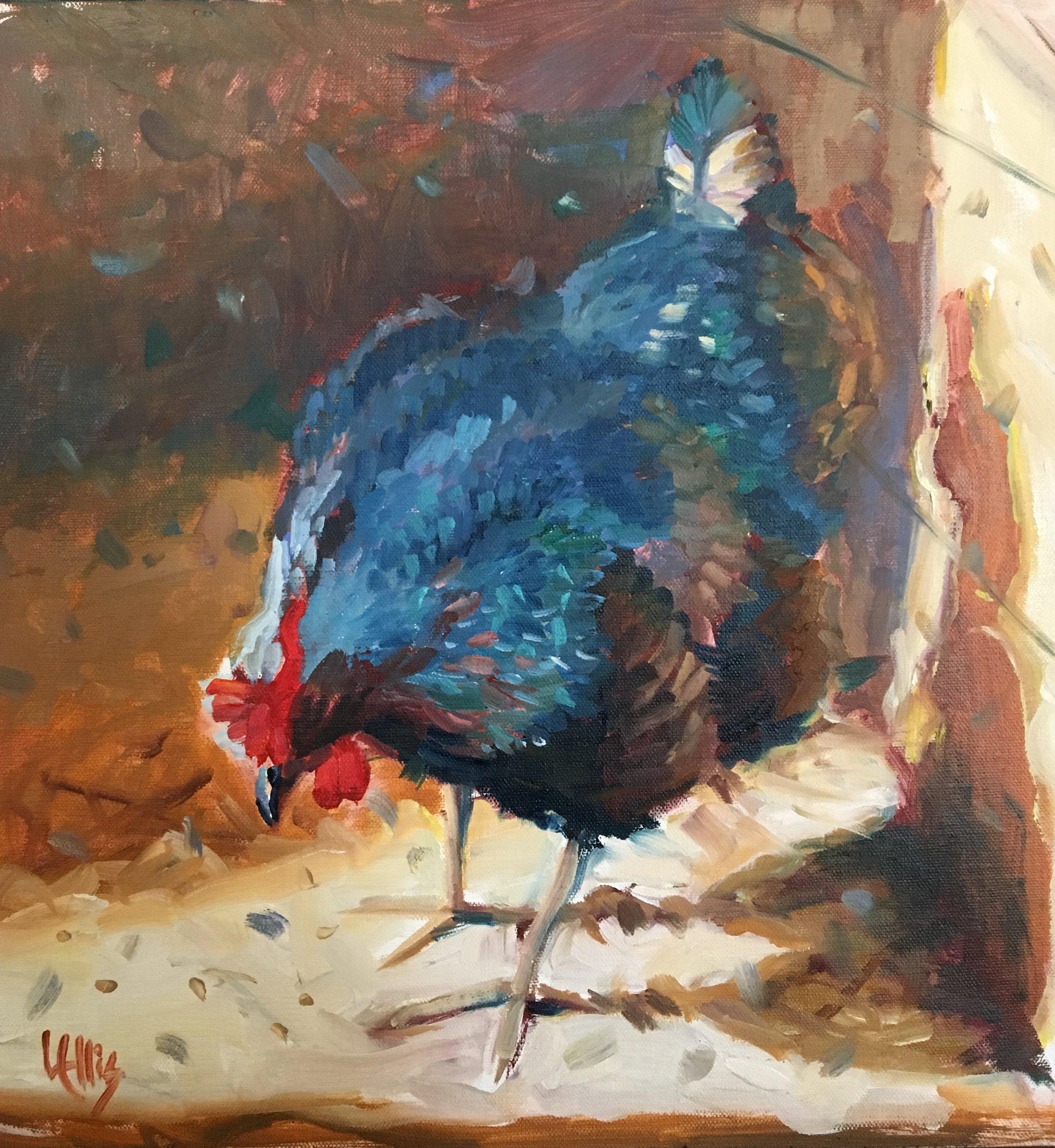 """""""Hen Pecked"""" 12"""" x 12"""" oil on linen, $500"""
