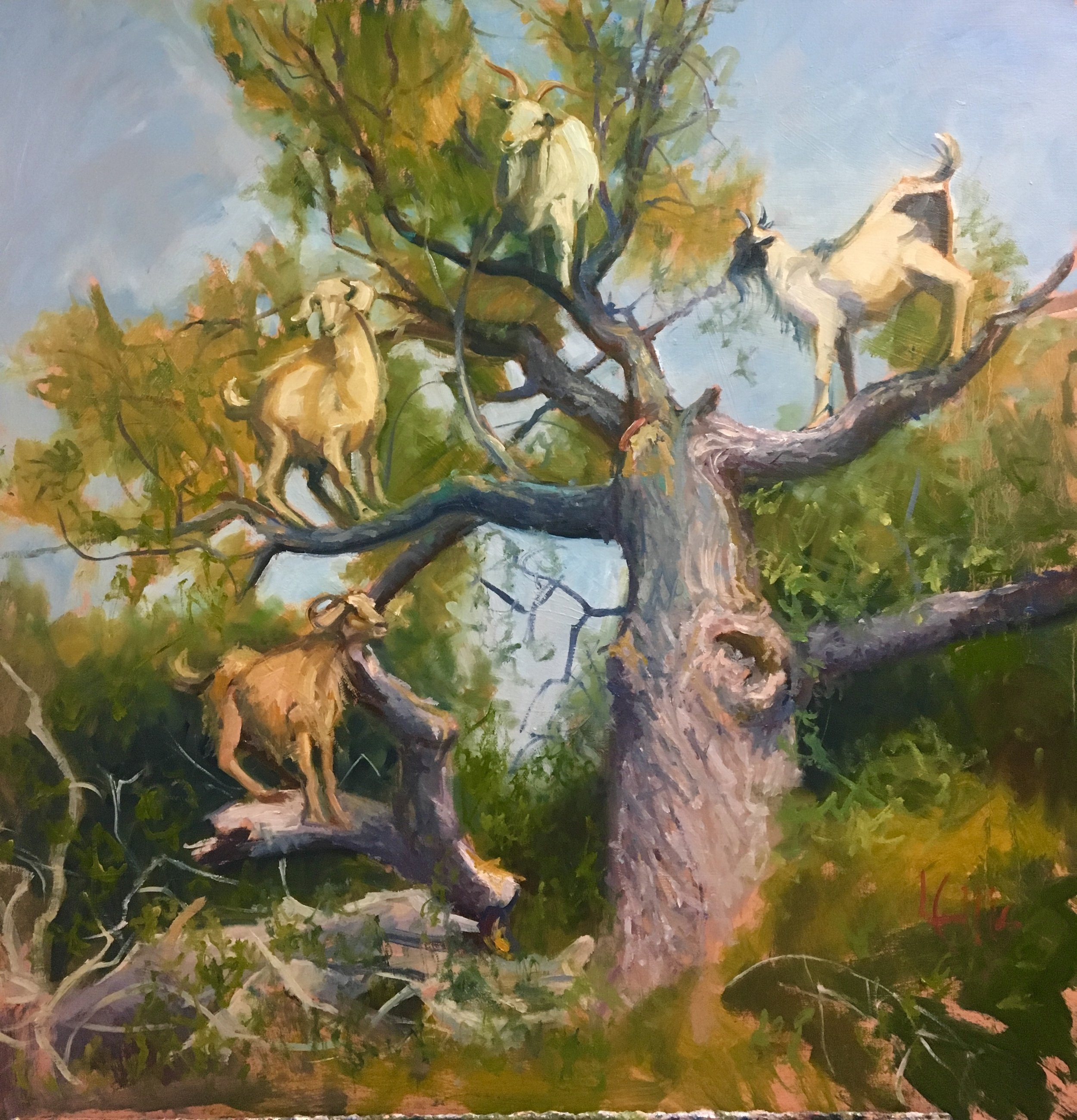 """""""Family Tree"""" 30"""" x 30"""" x 1 3/4"""" oil on canvas museum wrap  $2,000 available at Dogwood Gallery,"""