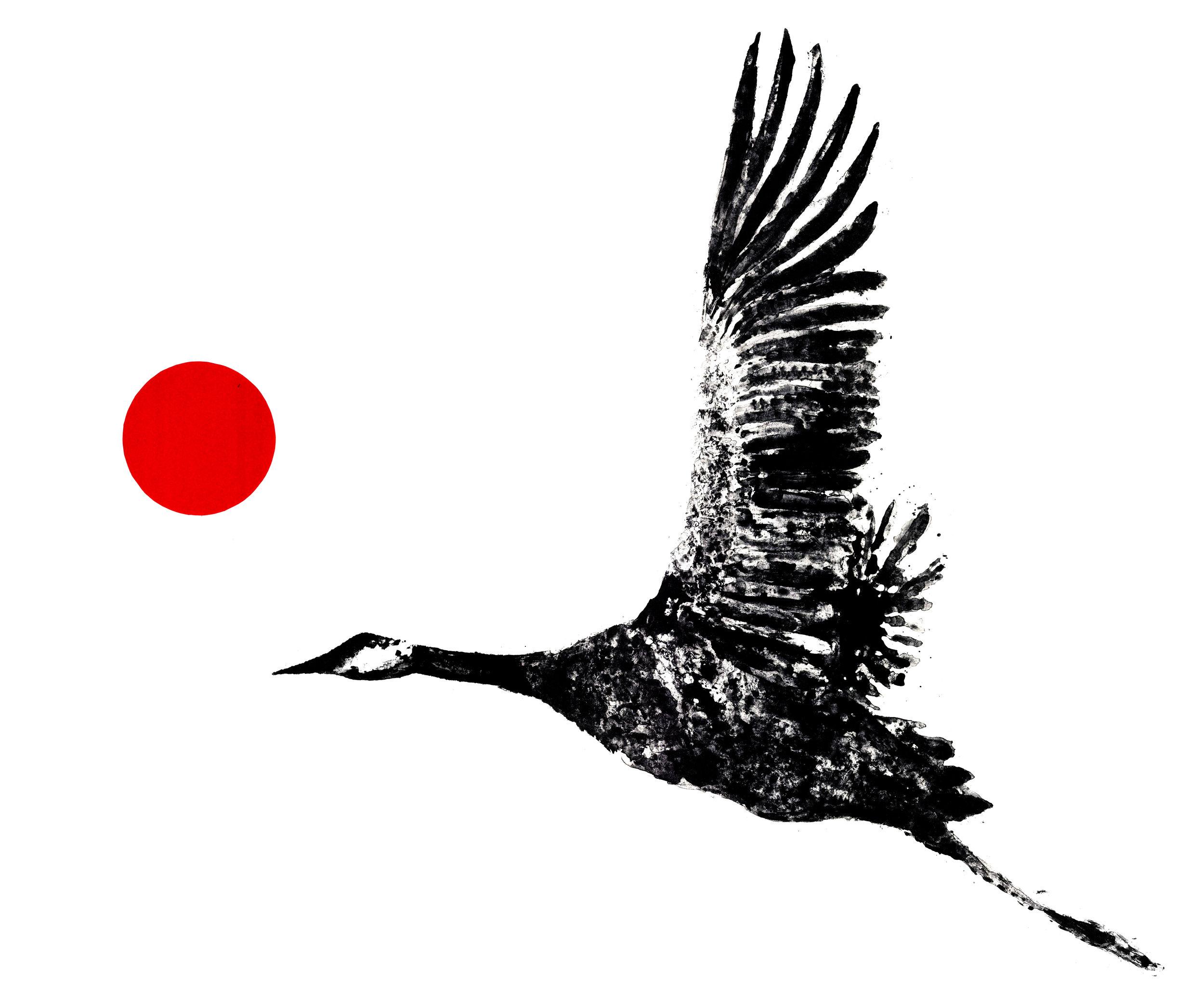 meg.crane.jpg