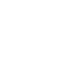 FSU logo white@0.5x.png