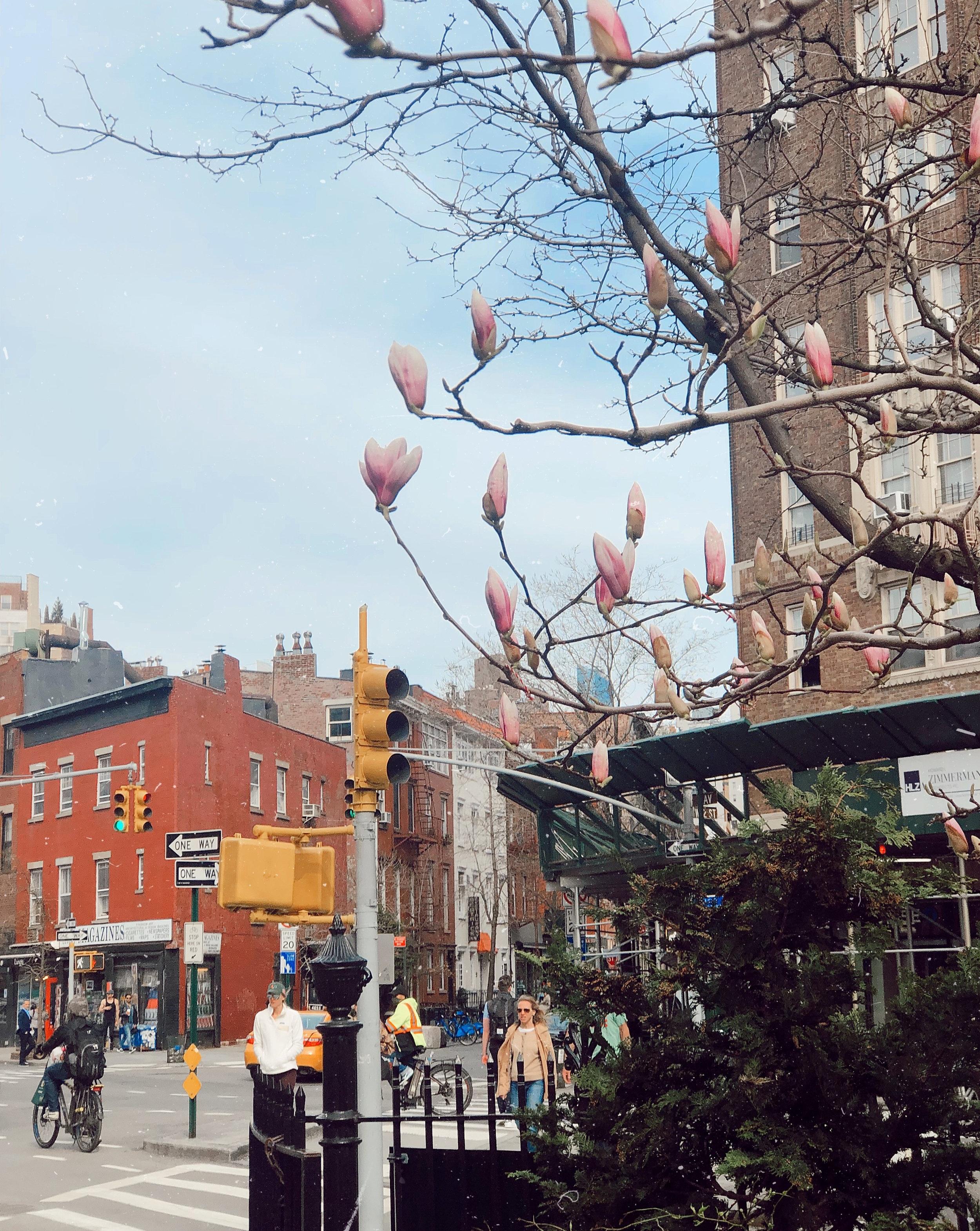 Hudson street NYC