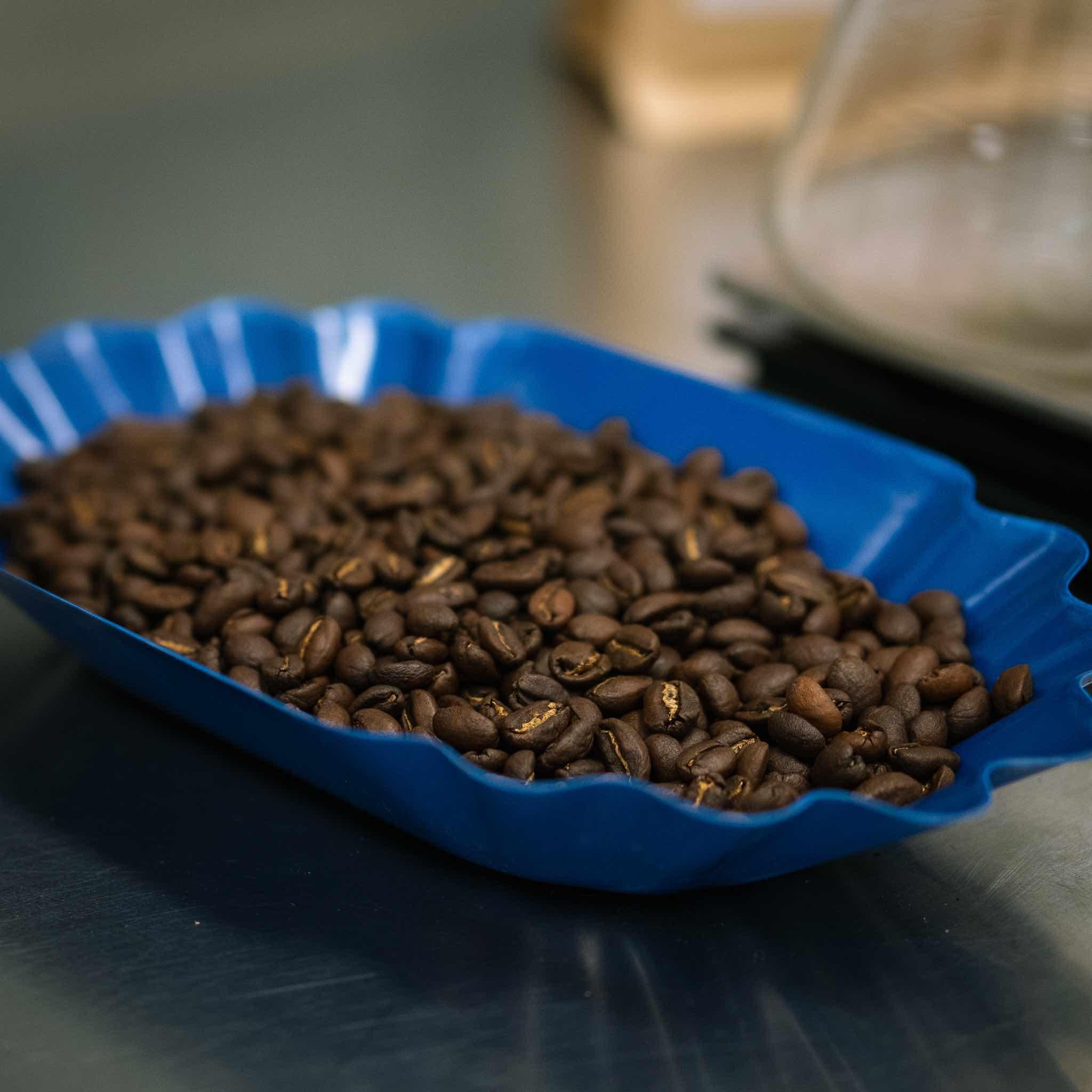 Mokamba Roast - Coffee in blue tray.jpg