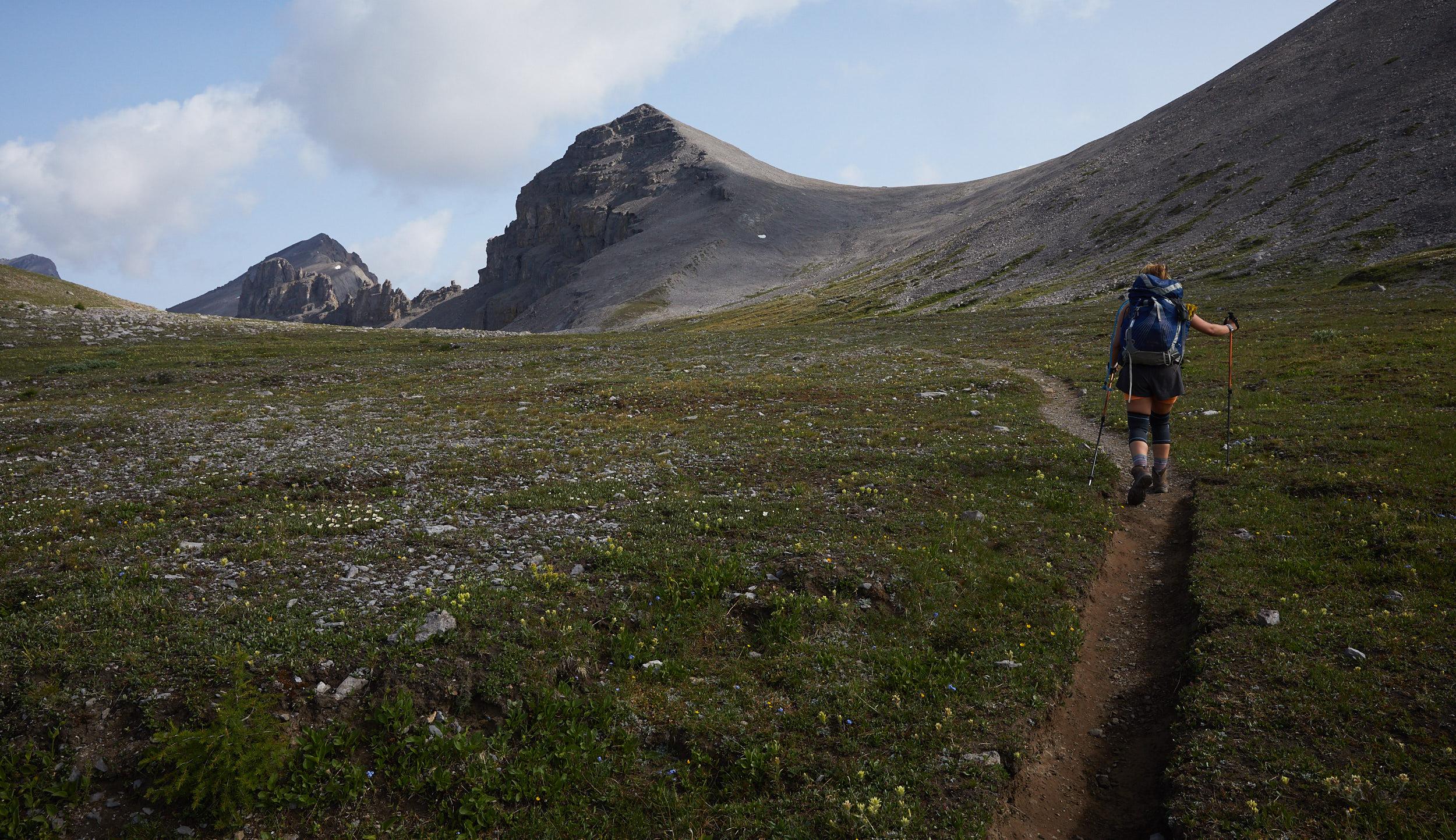 Mount Assiniboine 37.jpg