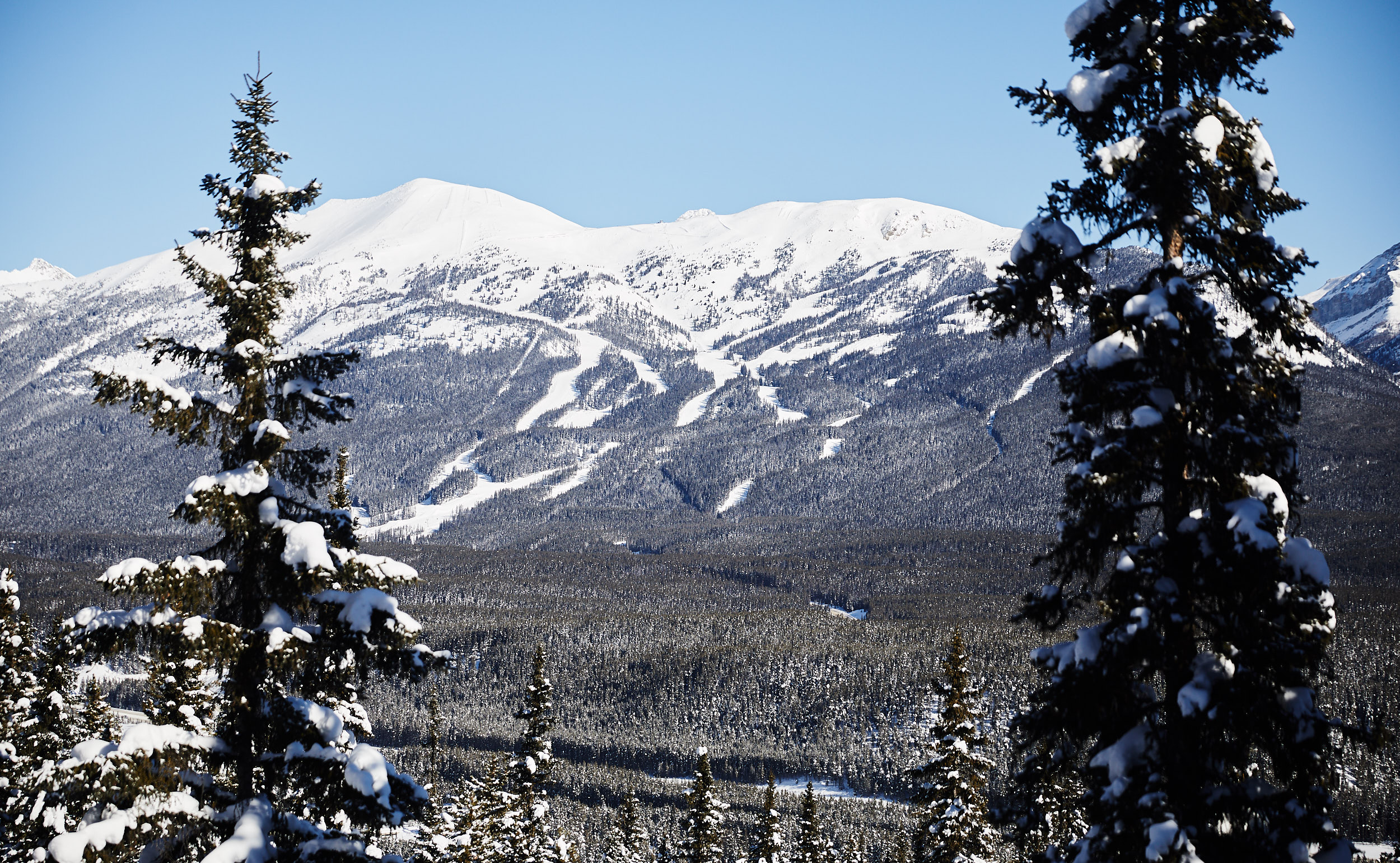 From across the valley you can see the Lake Louise Ski Resort.