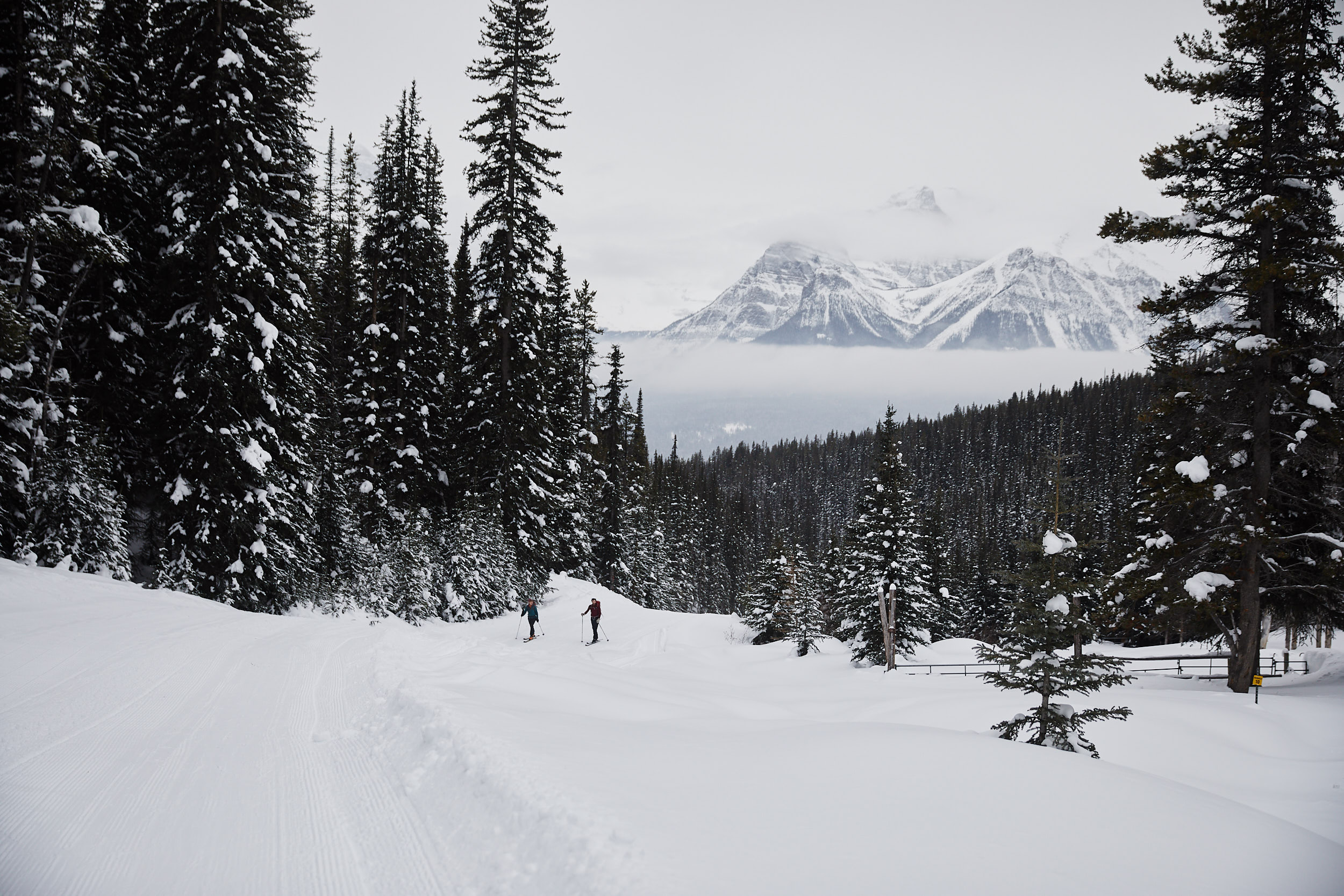Looking back out at the ski out as we approached Temple Lodge.