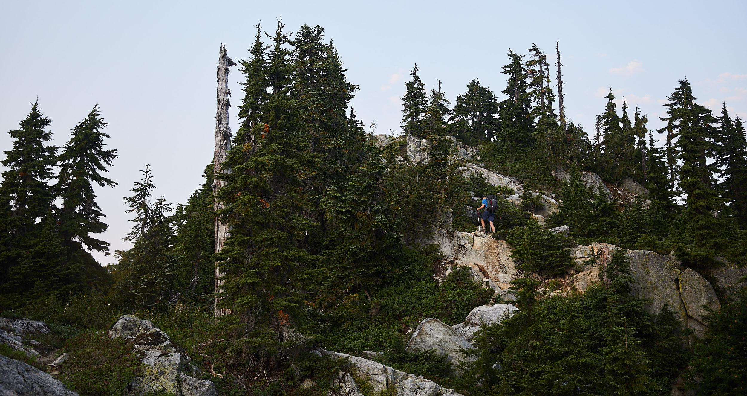 Howe Sound Crest Trail 9.jpg